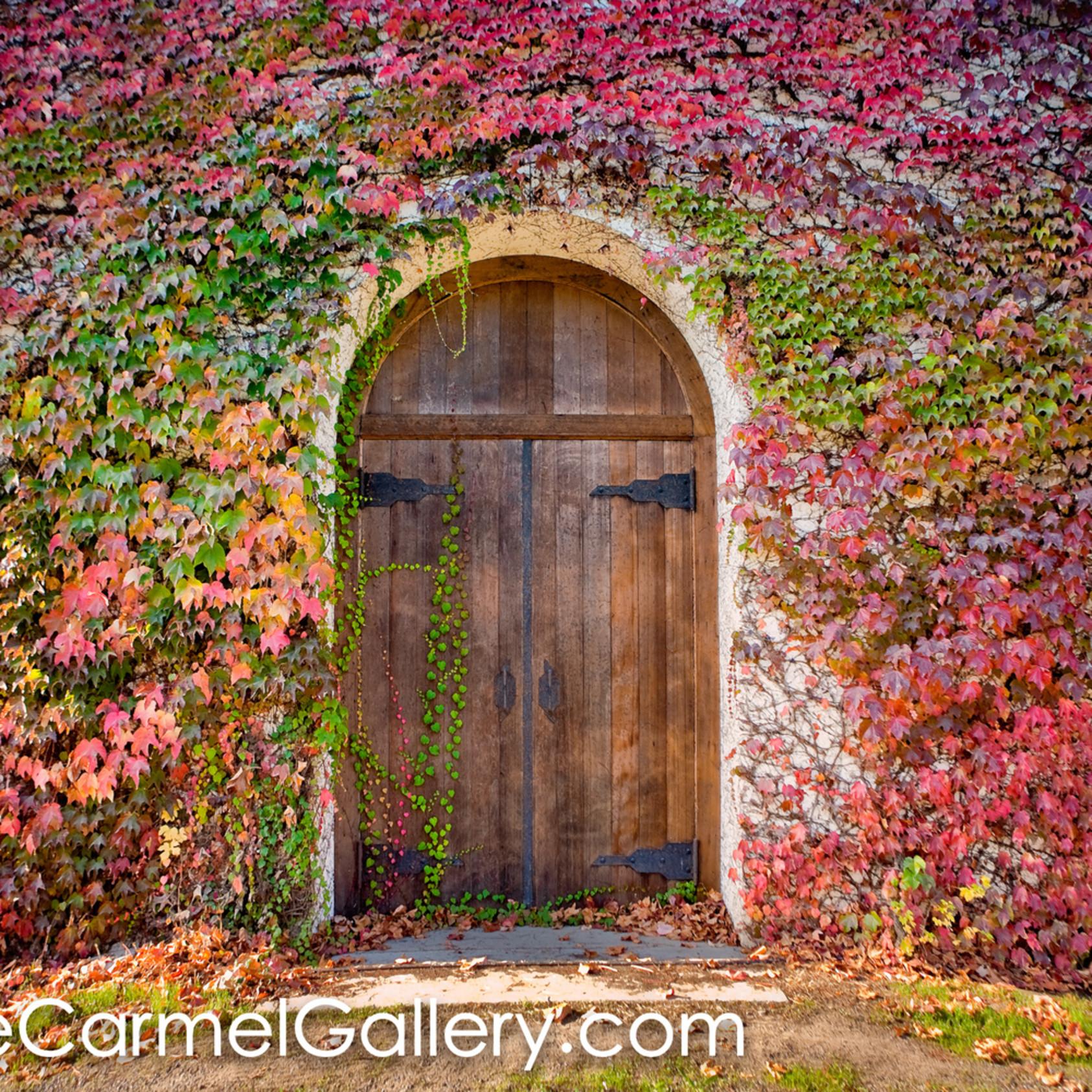 Door with ivy m9wpkt