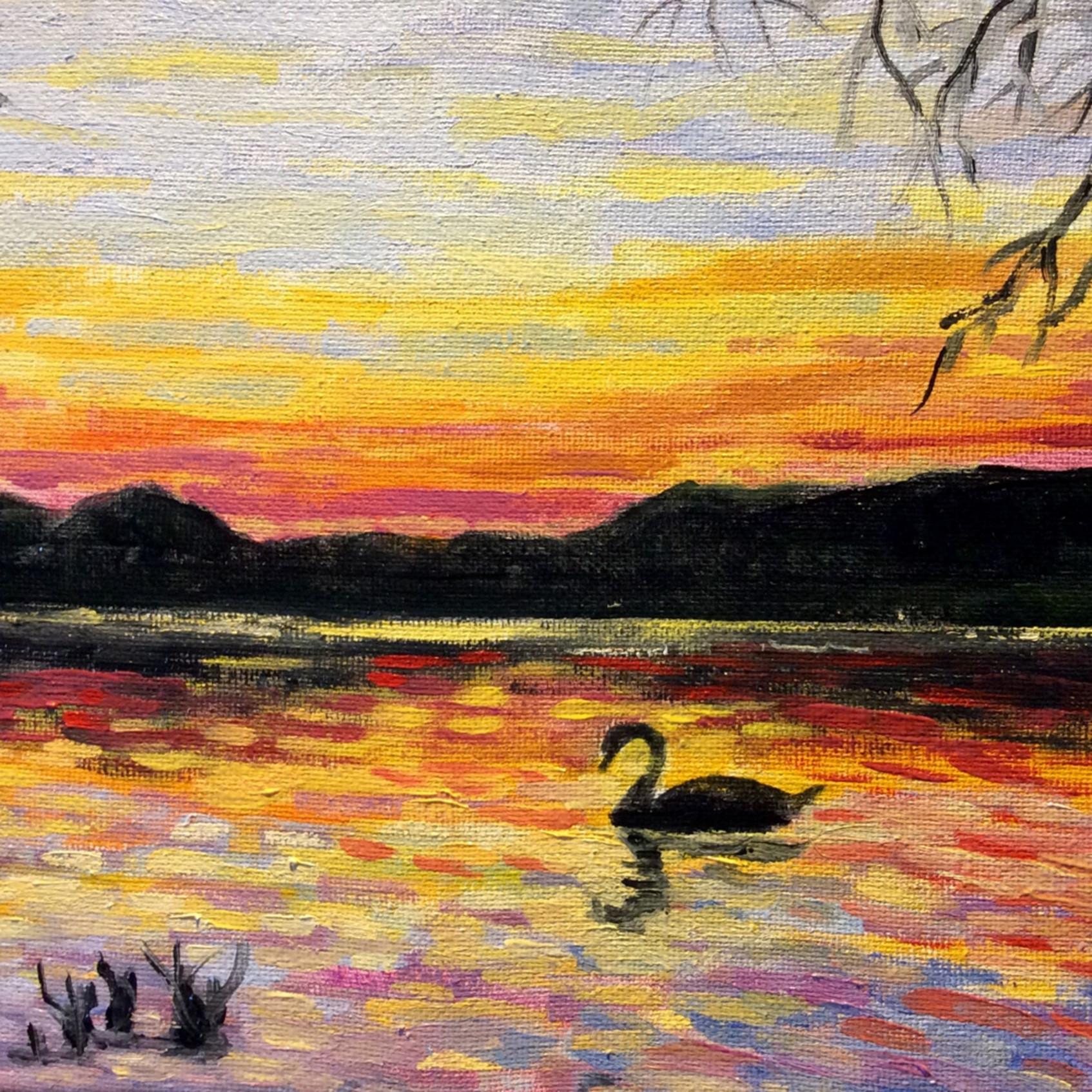 Swan rp2yqr