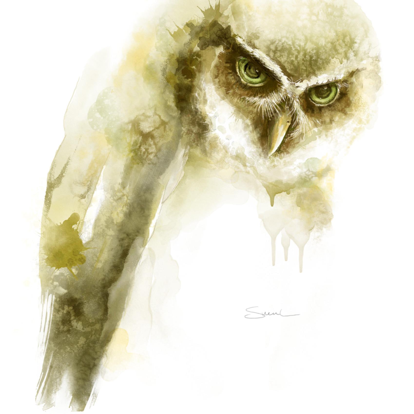 Owl watercolor jpqigs