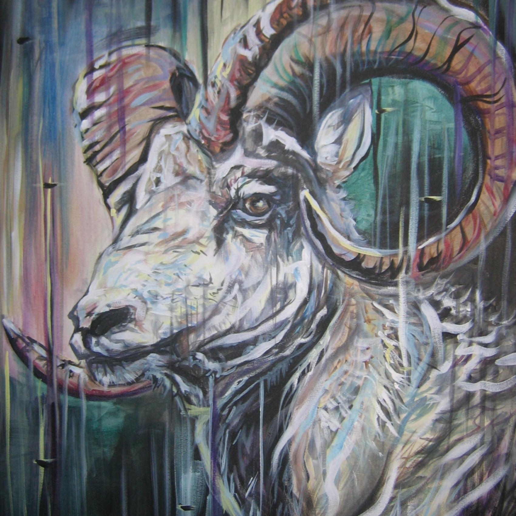 101 big horn sheep gkxuw1