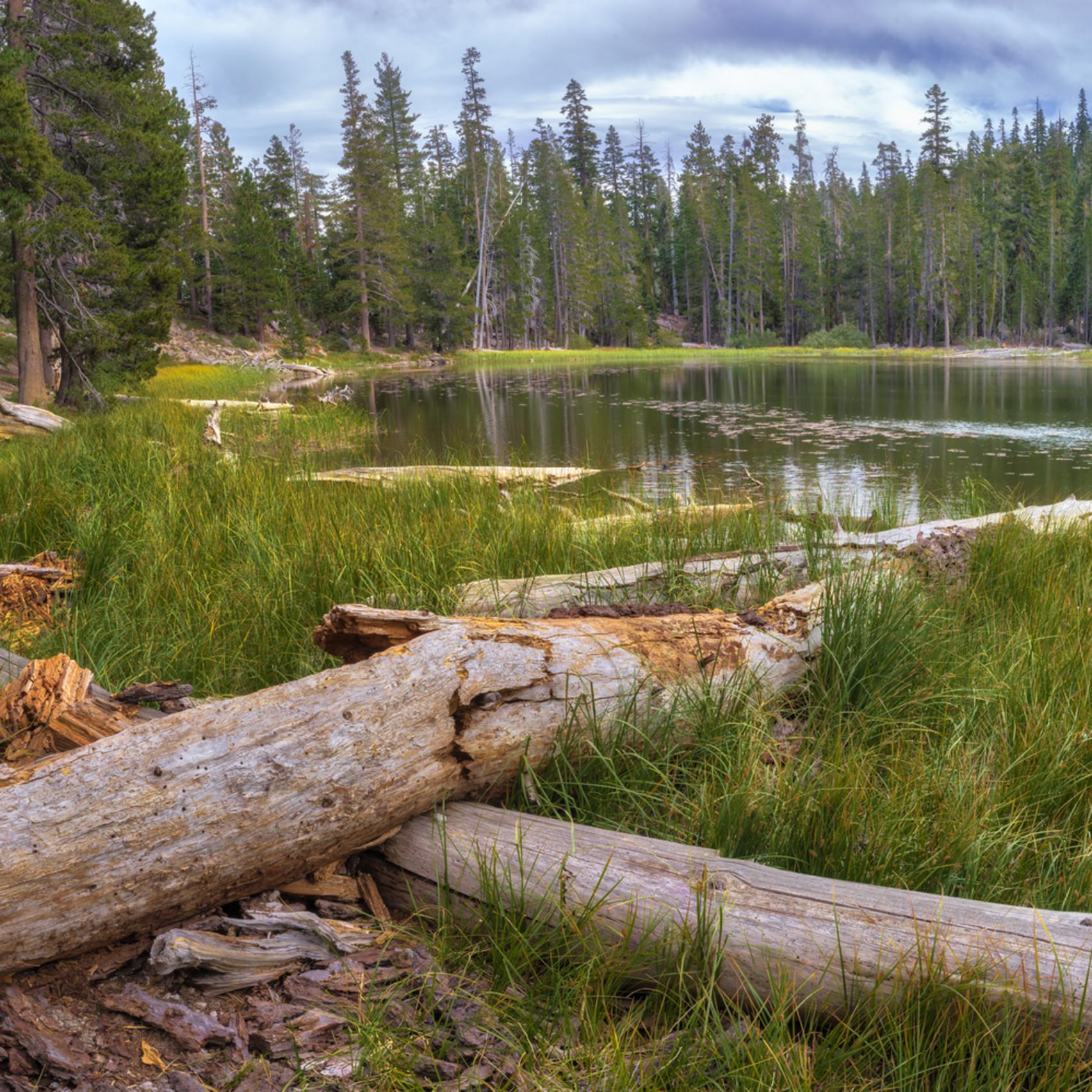 Warren lake summer dam8cc