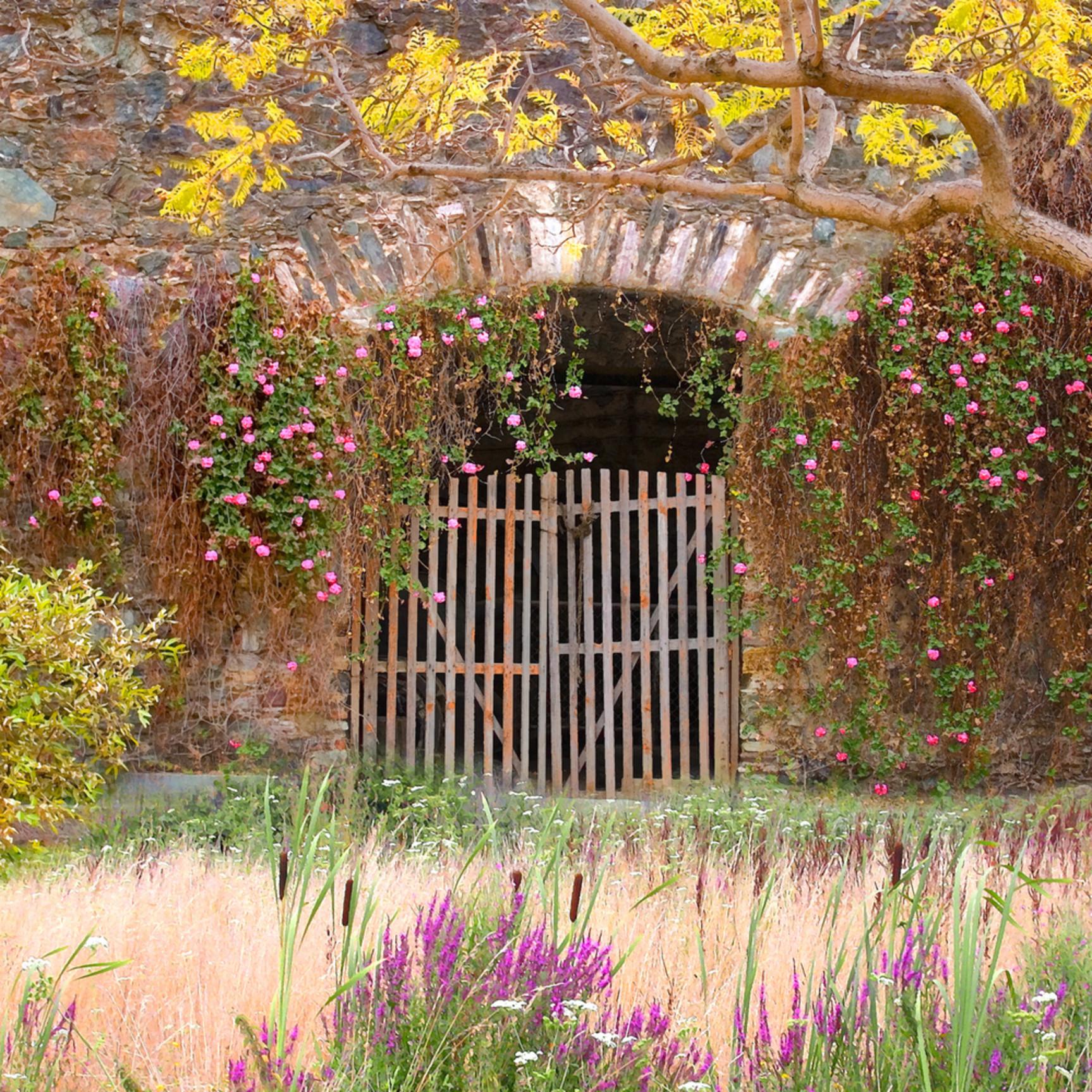 Gate of ages qzazqe