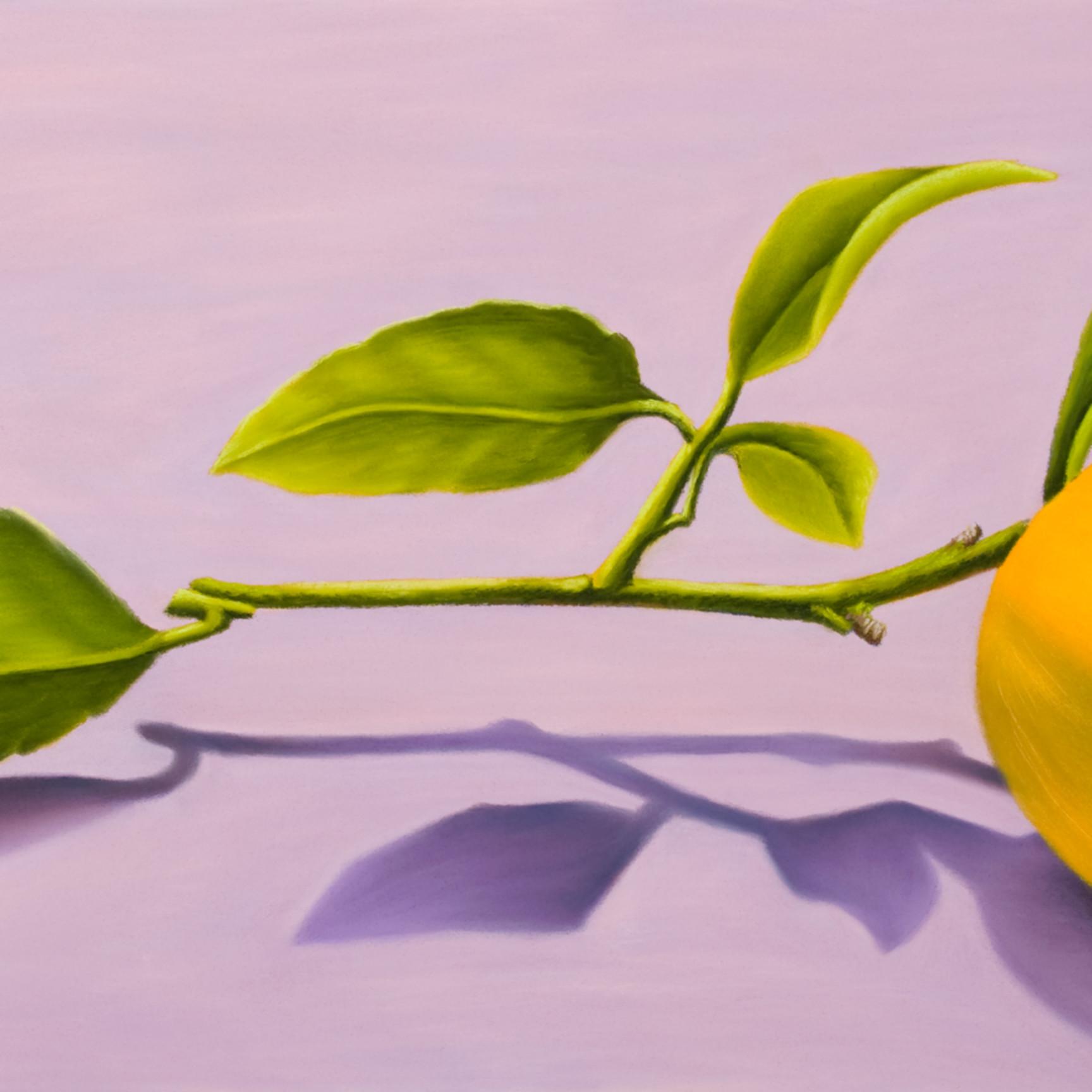Lemon xtrvvw