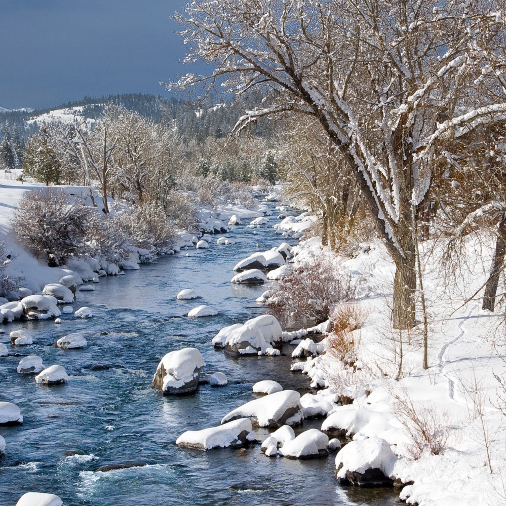 Winter morning truckee river iuc3bt