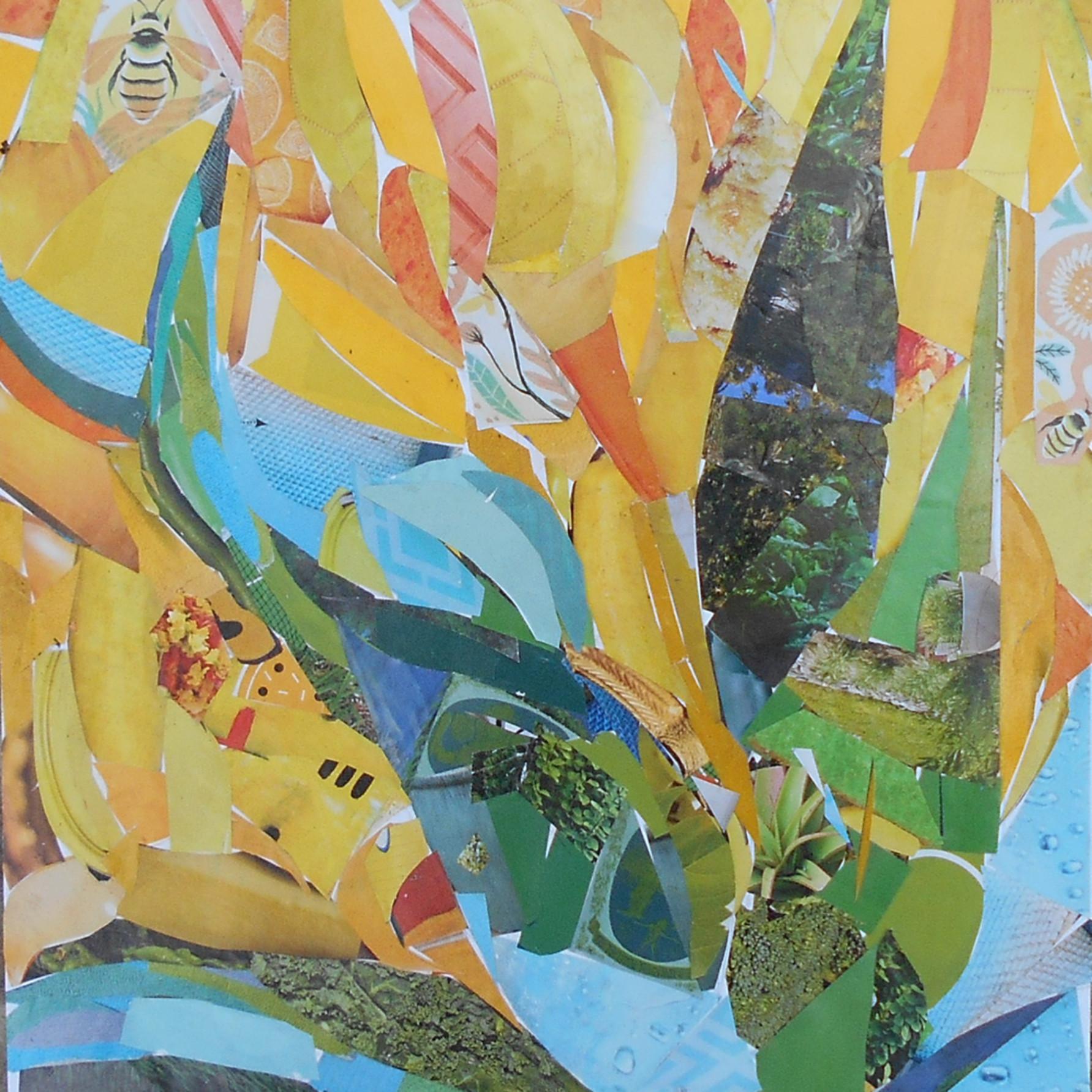 Blue agave ywz9ri
