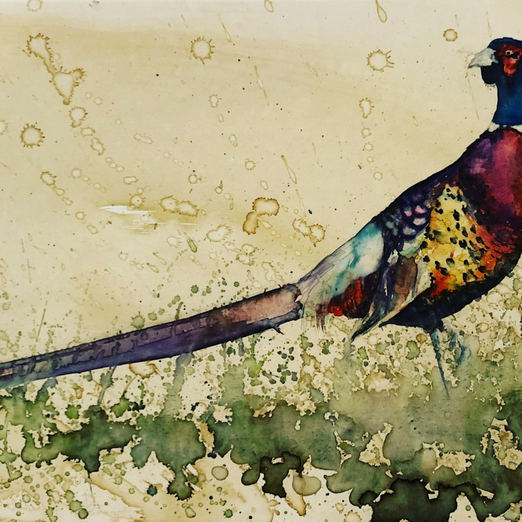 Pheasant stand jmuwzq