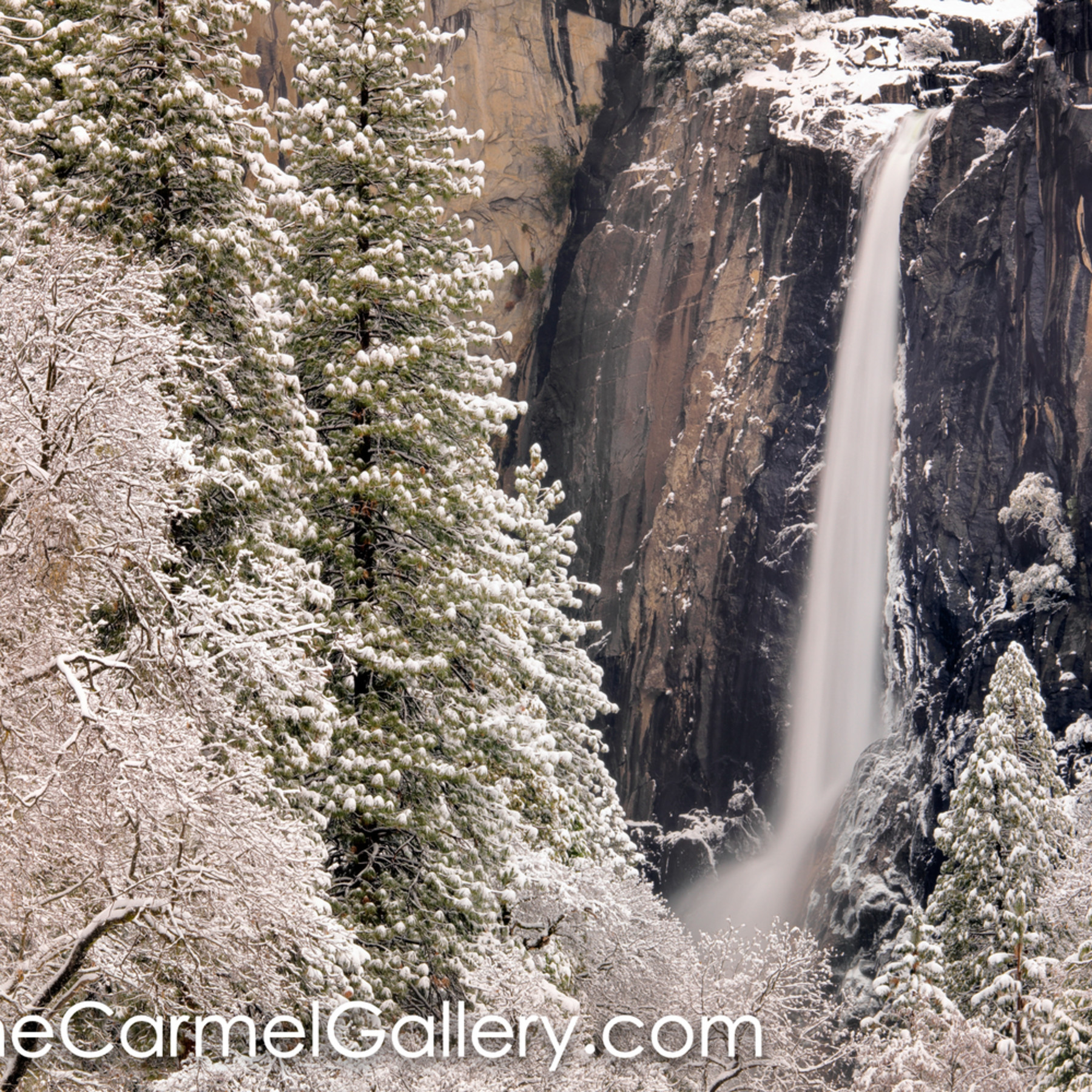 Winter wonder yosemite vpryiw