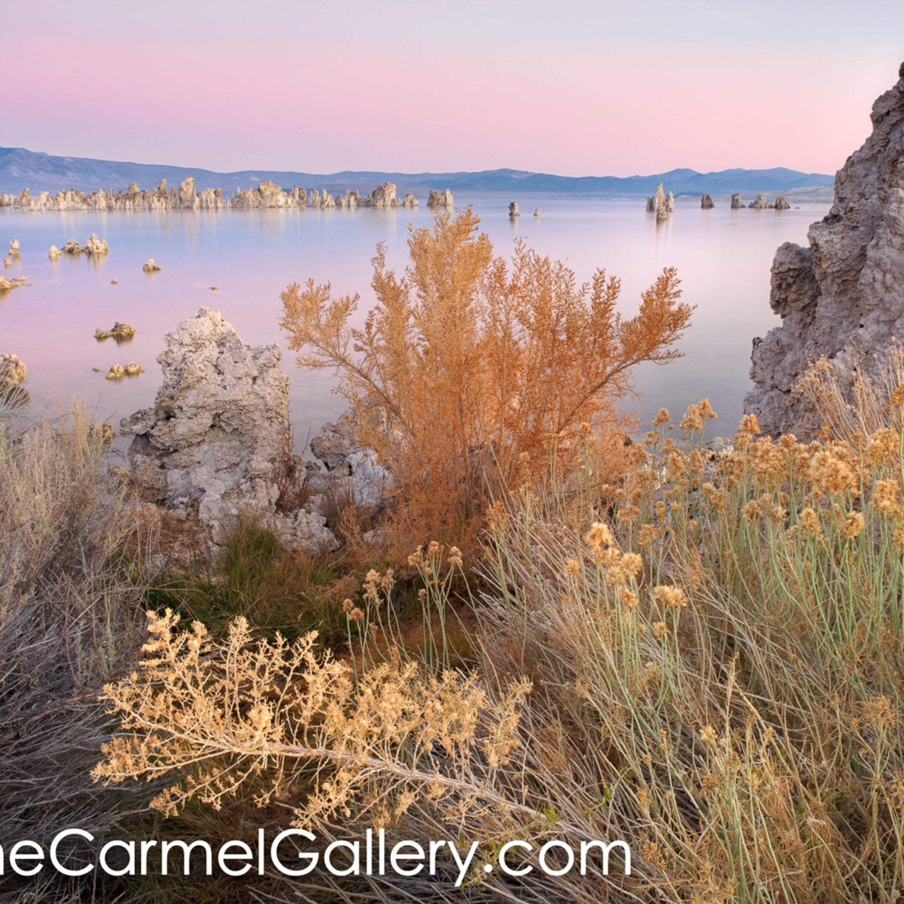 Autumn morning mono lake exfp18