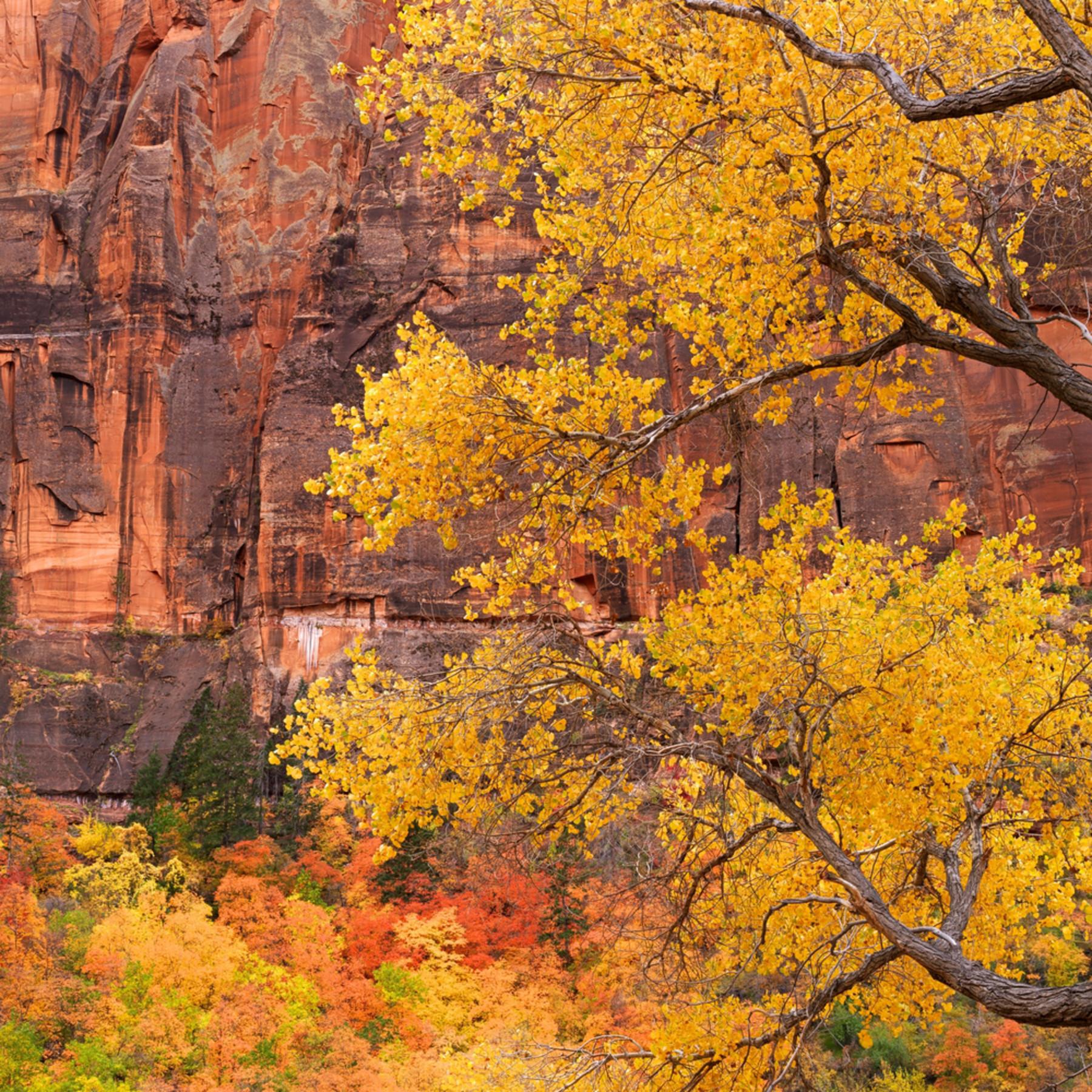 Canyon autumn juhuqc