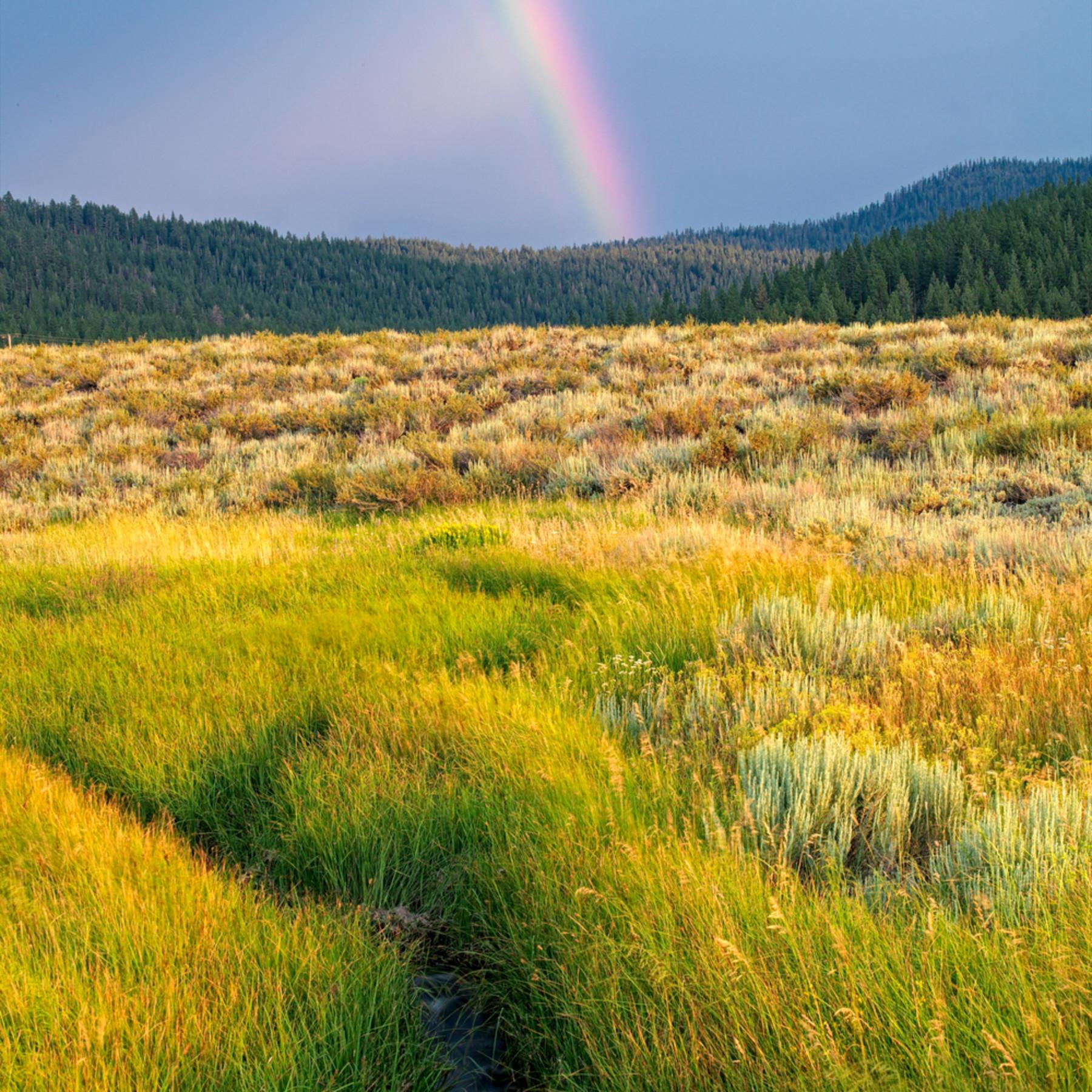 Martis valley rainbow n3llwu