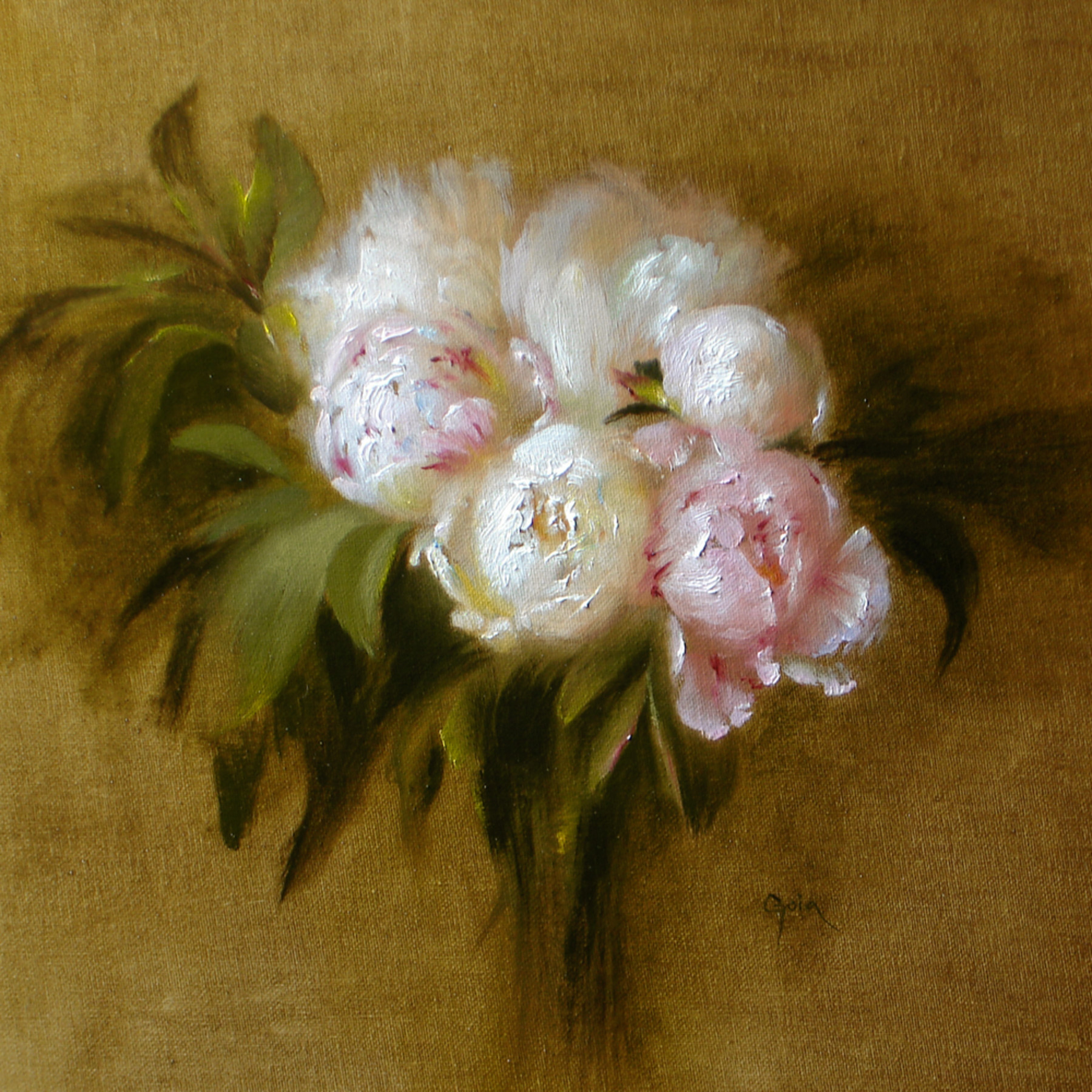Pinkpeonies edit efd4hp