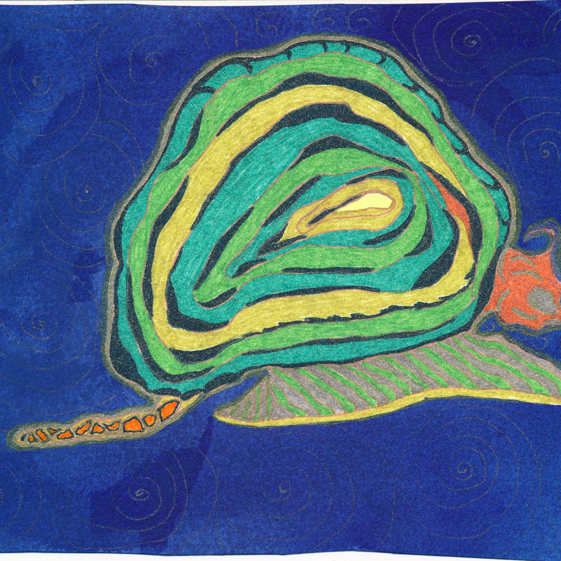 Pam white snail nvafgd