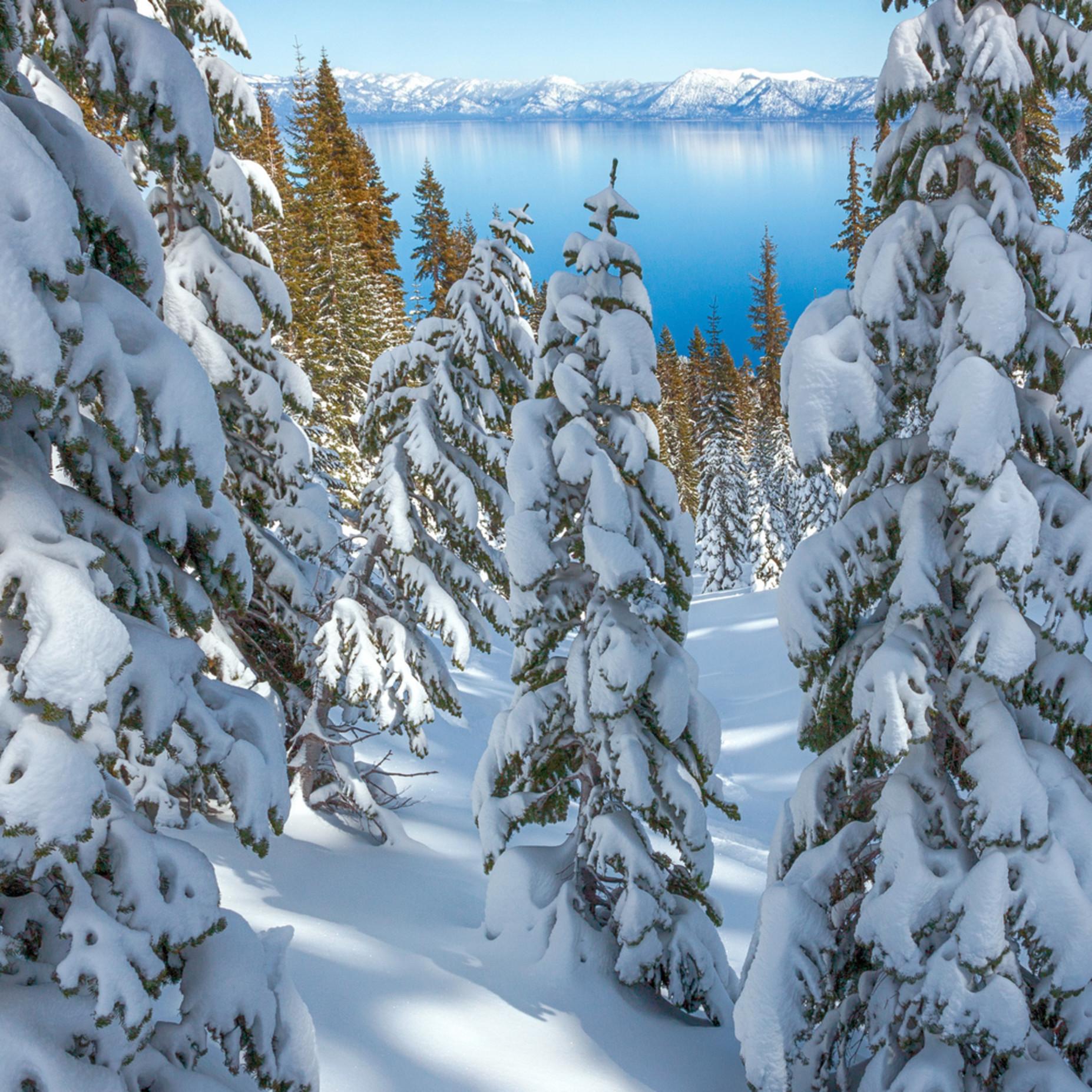 Snowy calm tahoe v zw7xv2