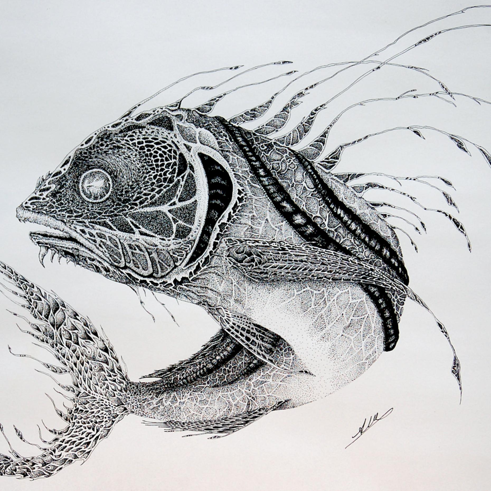 Rooster fish pen1 jhjvef
