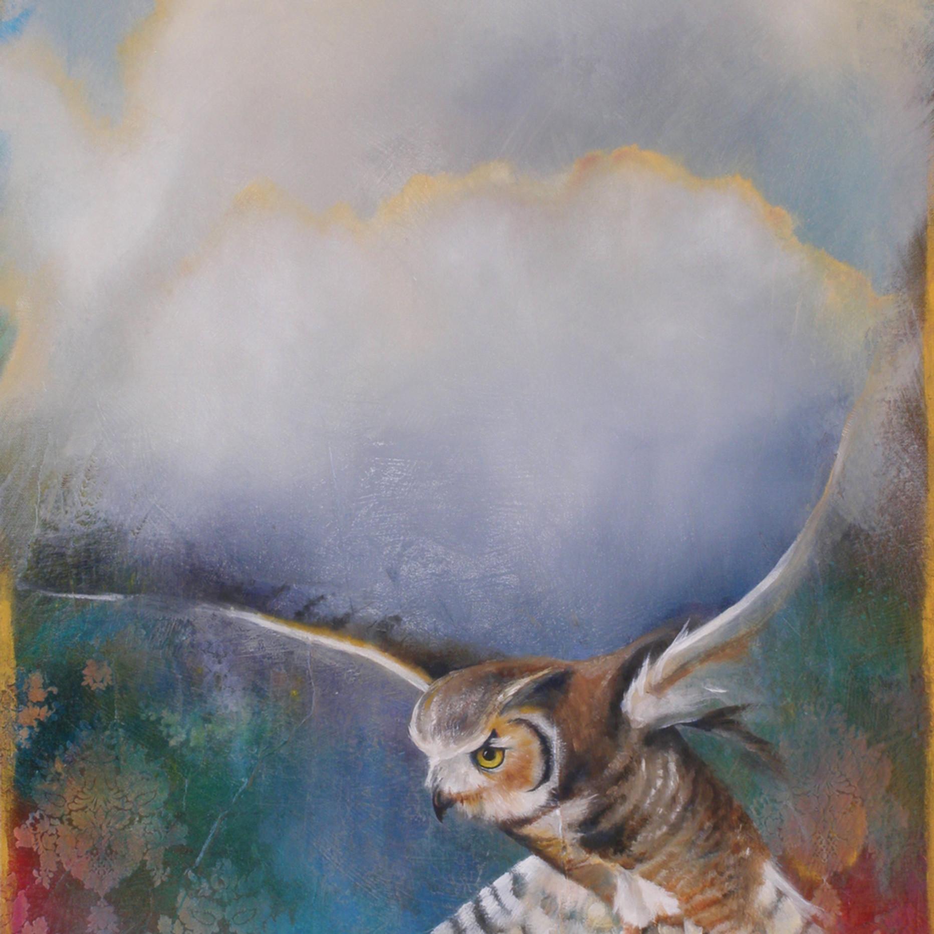 Owl5 zeyrai