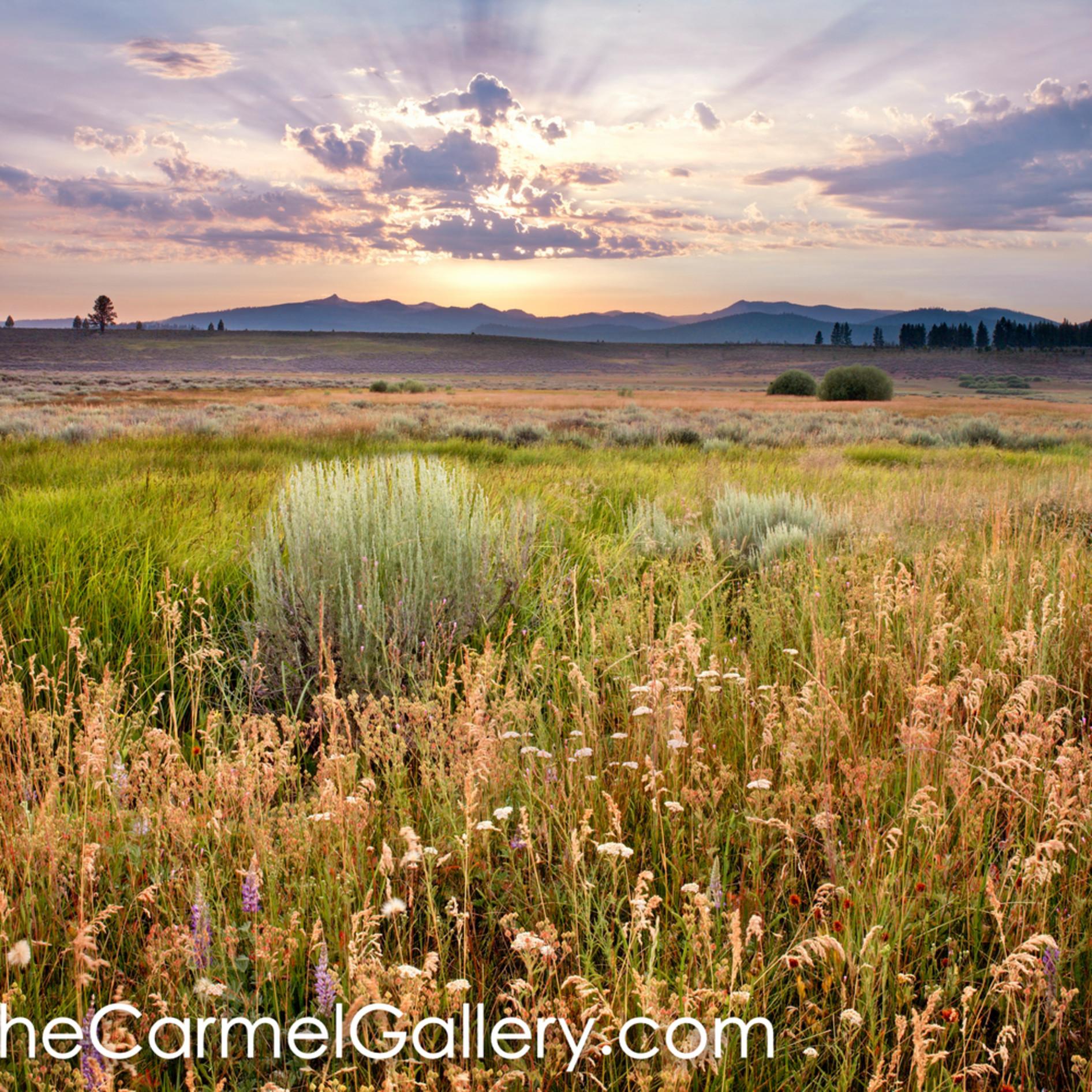Summer sunset martis valley pgcp26