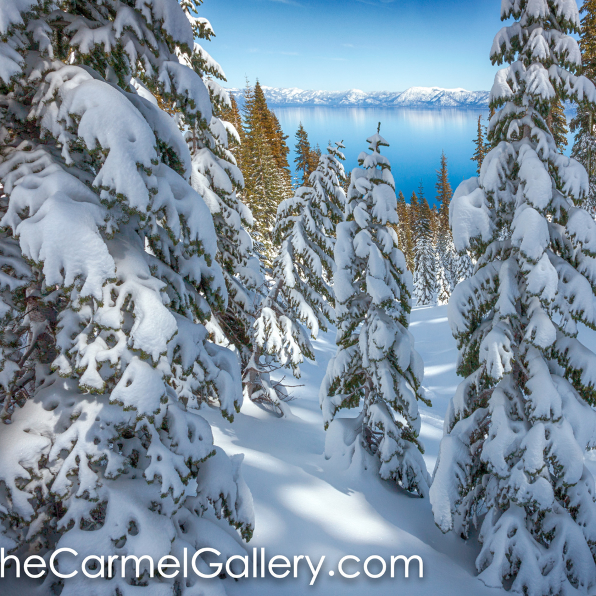Snowy calm tahoe fvtyew