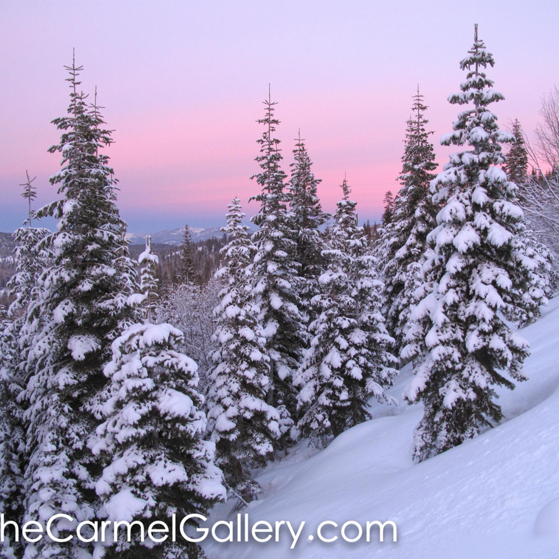 Winter sunset qju40d