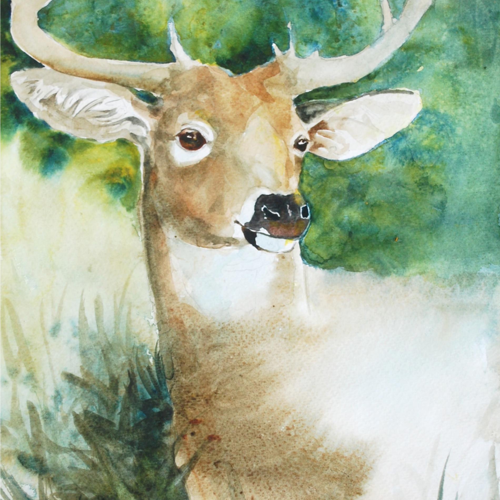 Deer in forest 08 iwnjtc