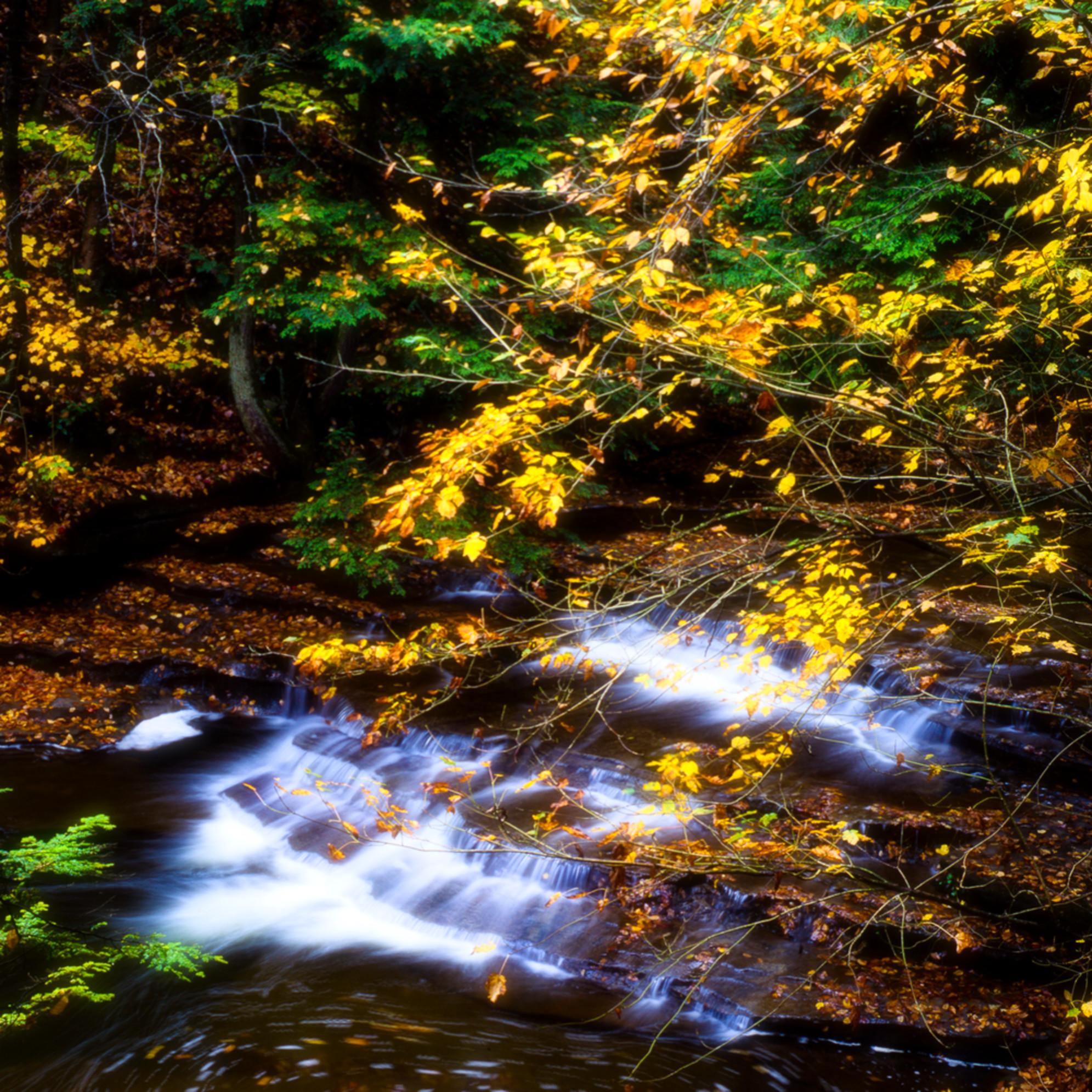 Autumn along buttermilk creek lnzboq