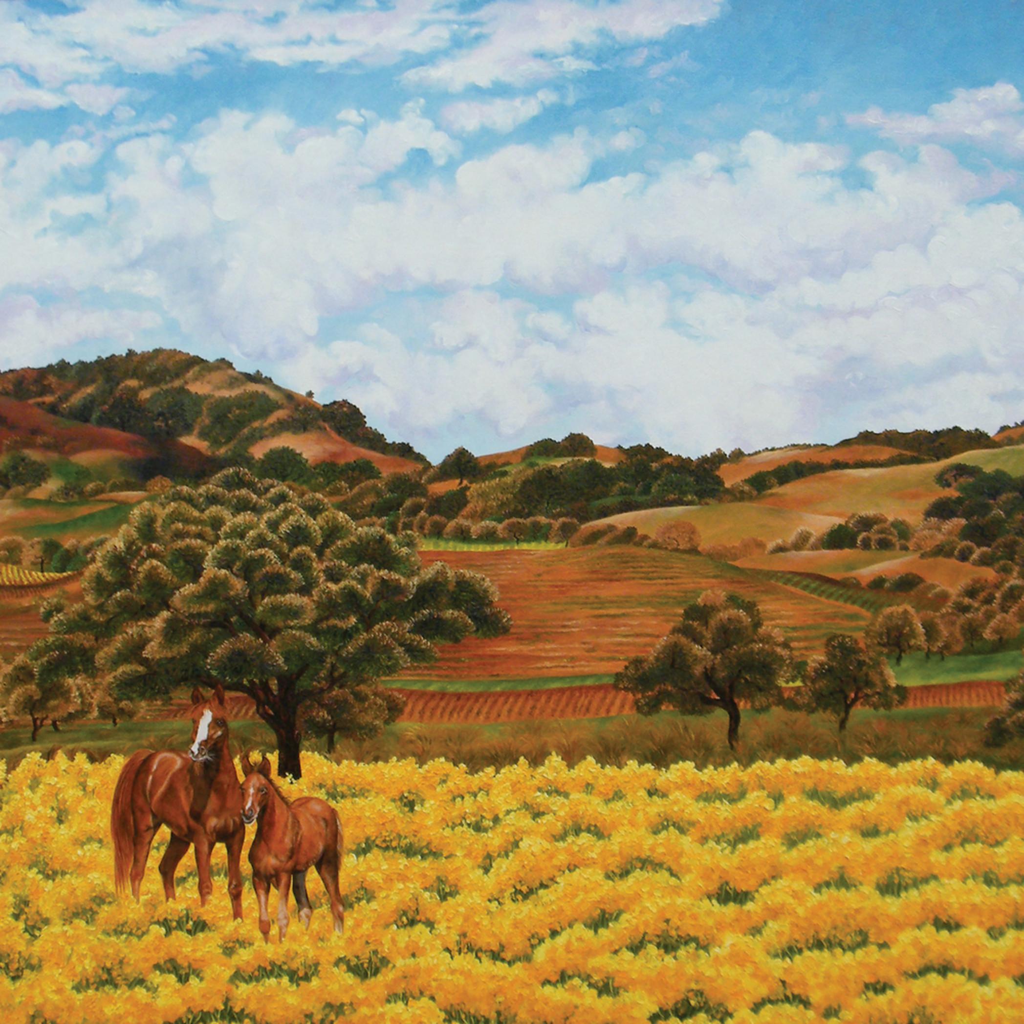 Oldsonomahorses rgb copyto work on voyu2a