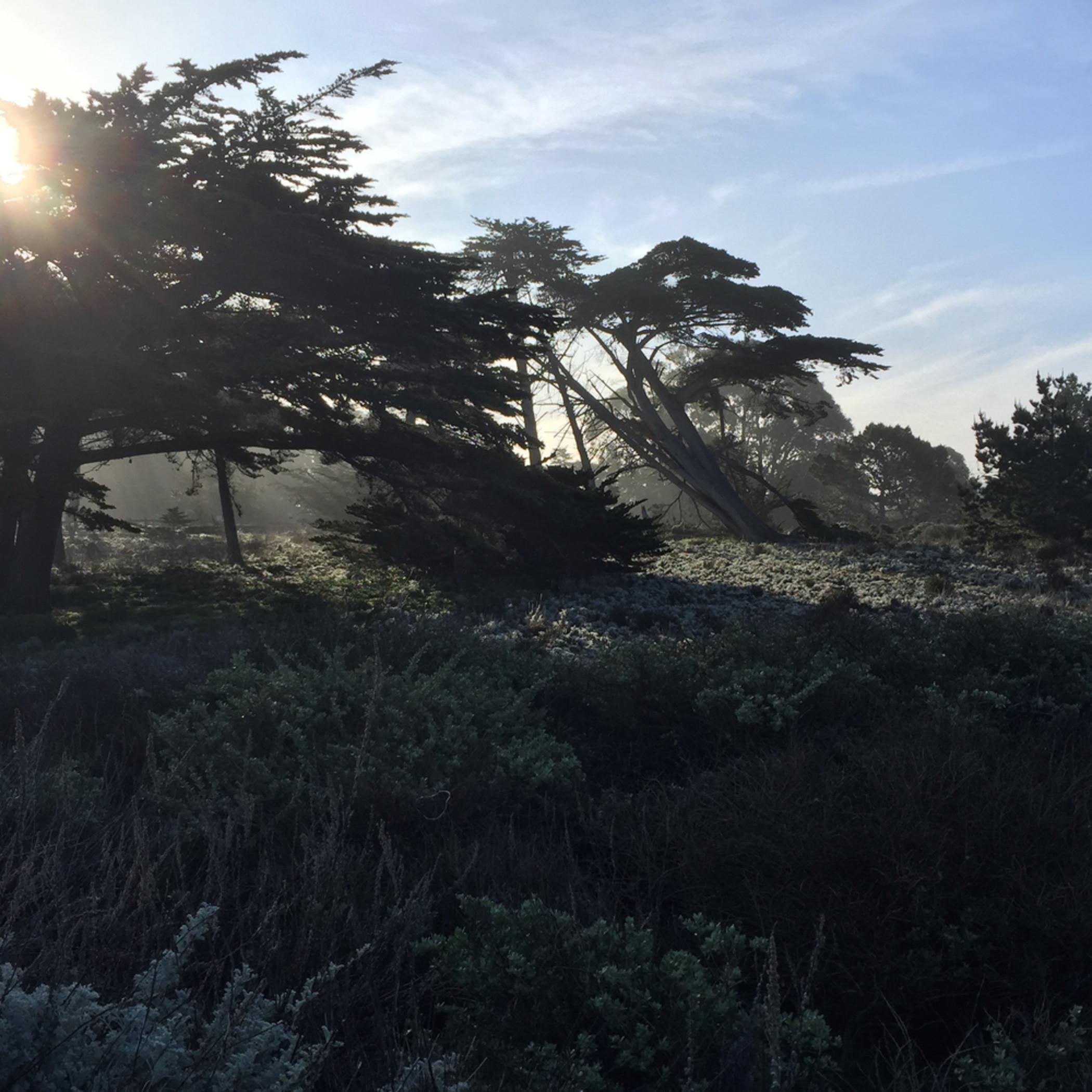 Monterey bay sunrise jmmason aifoky