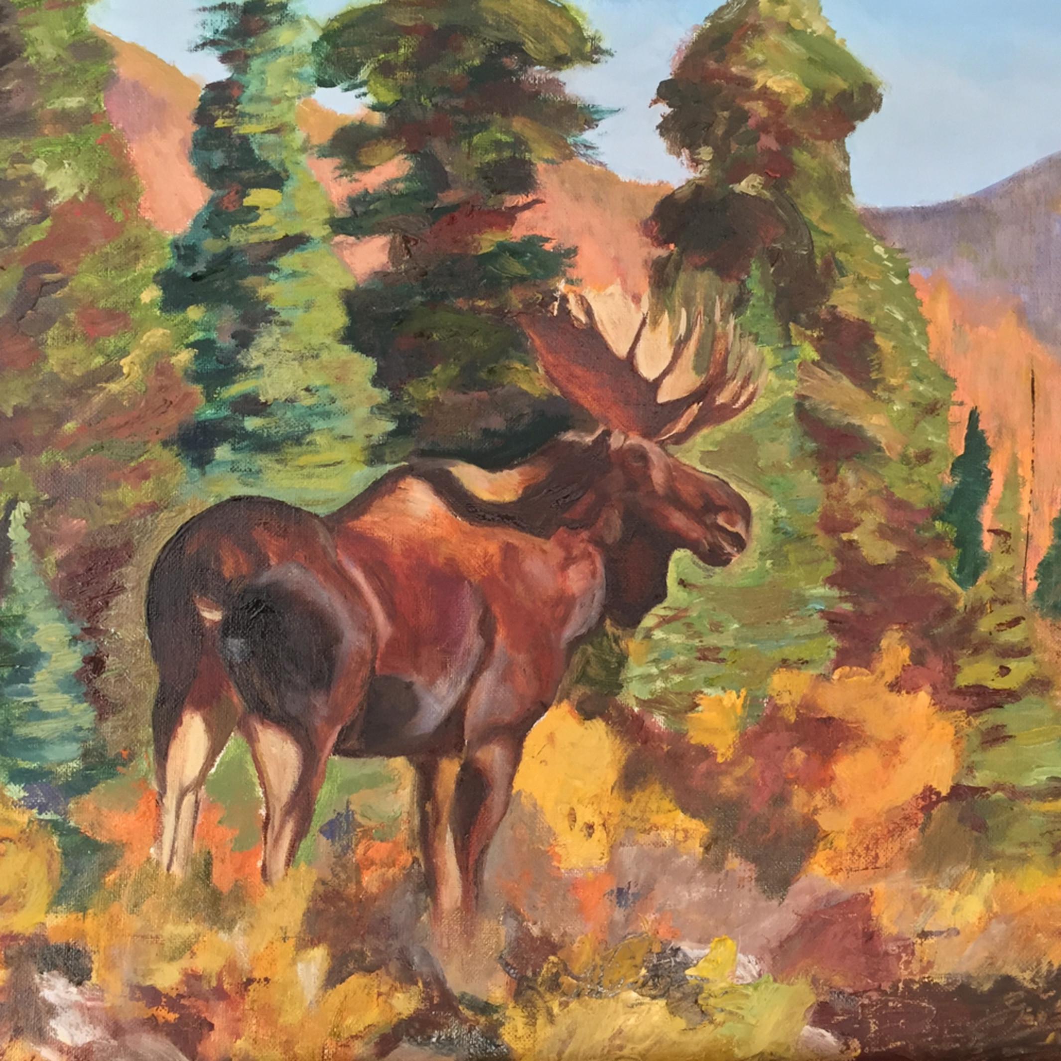 Moose afternoon wxafyu