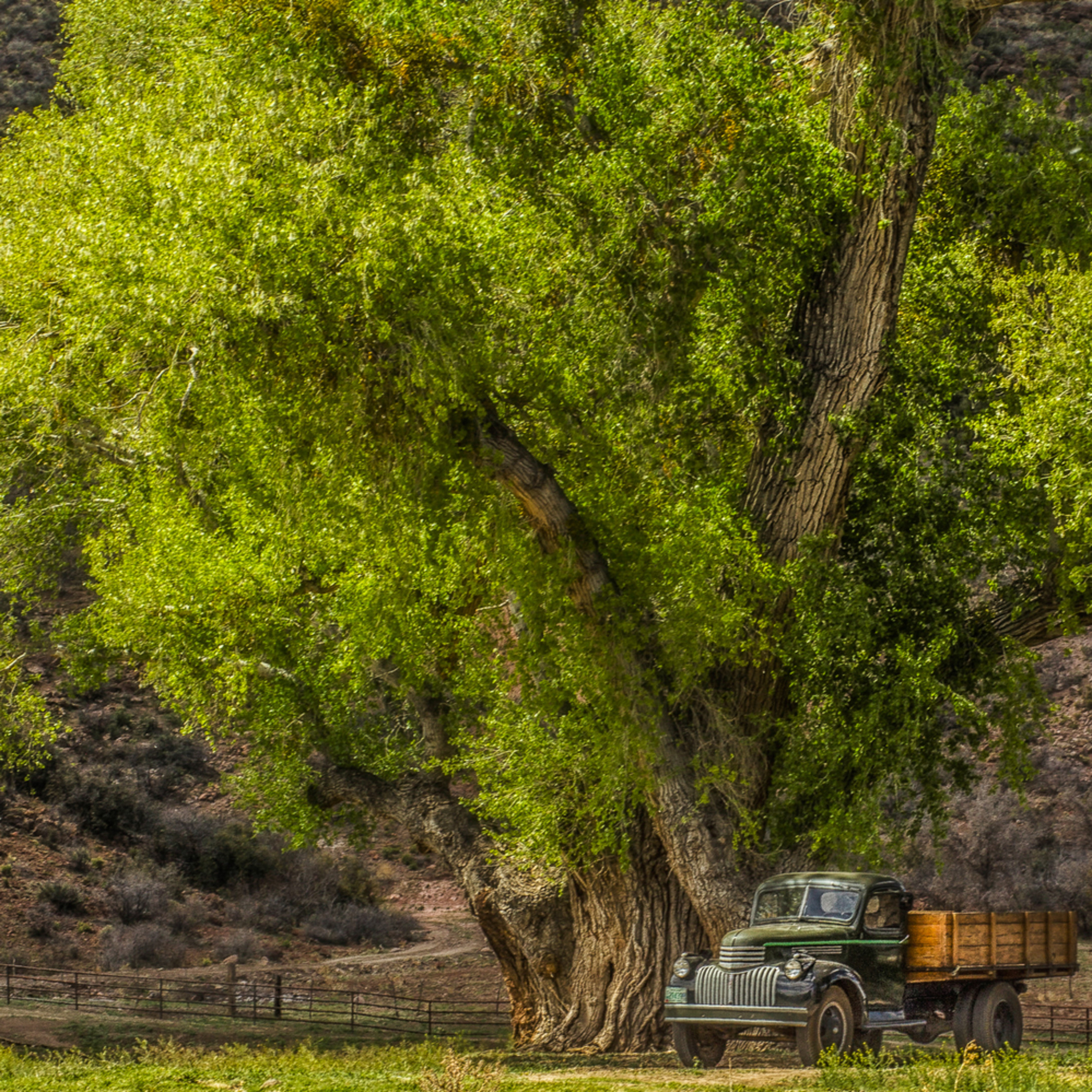 Country shade for an oldtimer fyvxqt