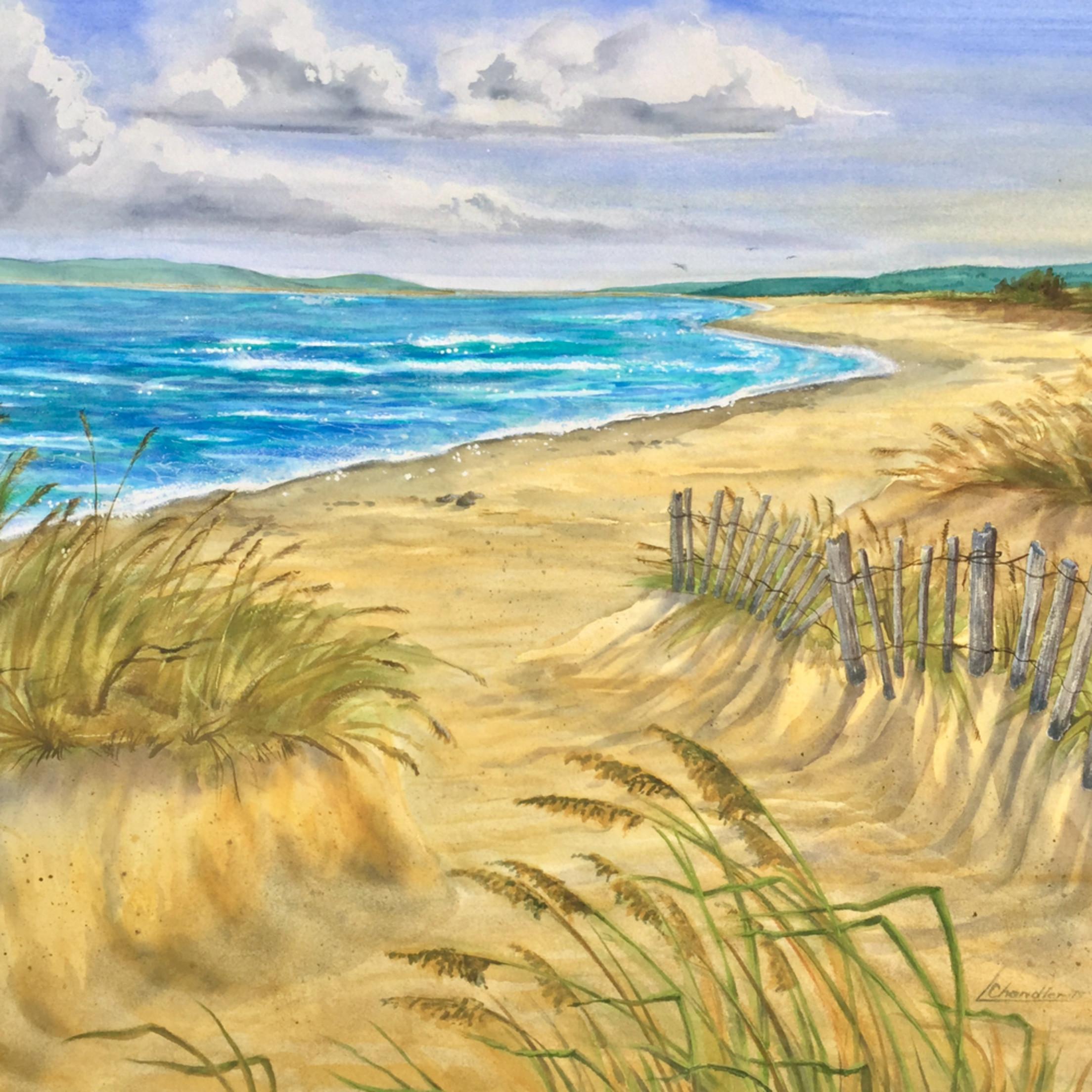 Beach fence mw43da