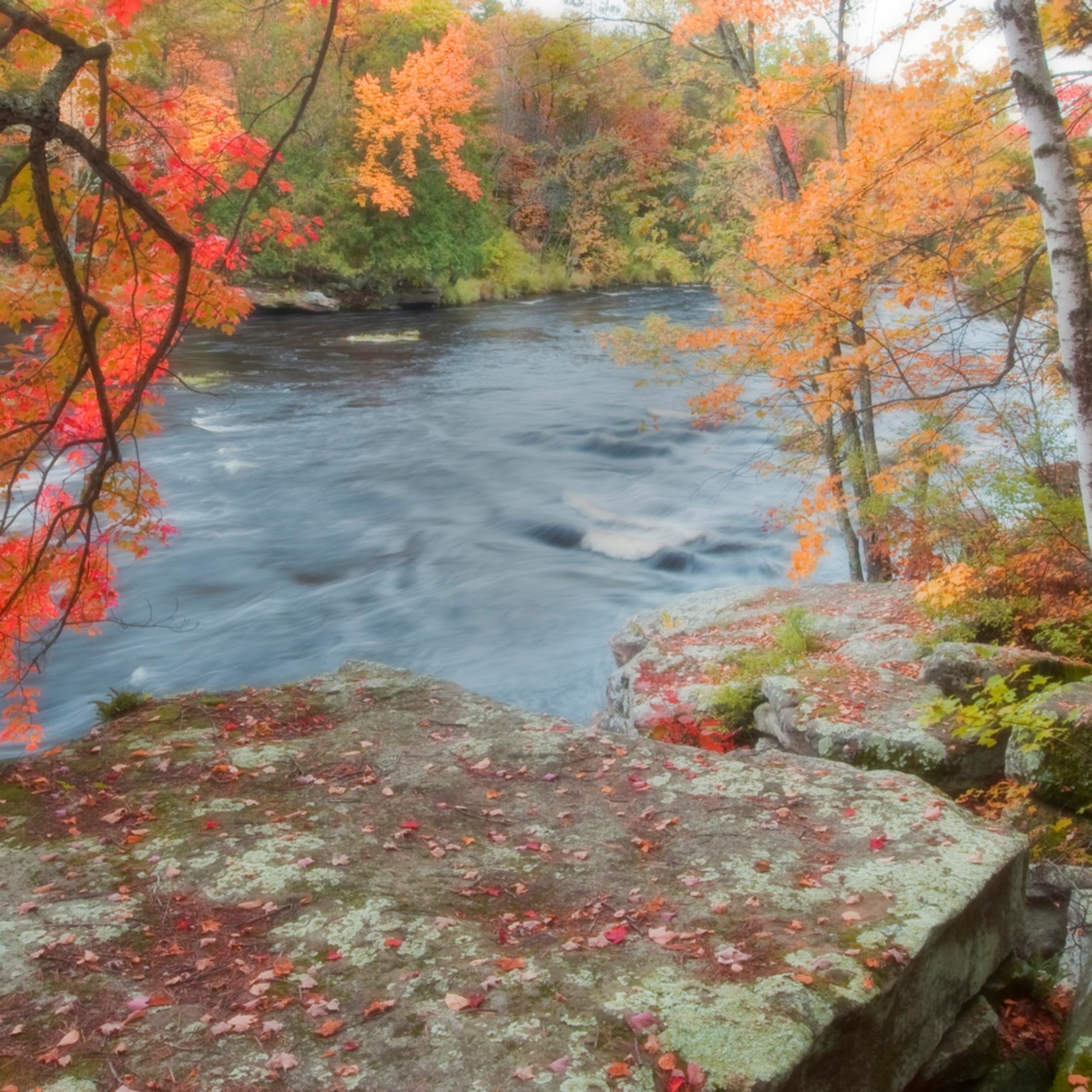 Dreaming of autumn ya3l9a