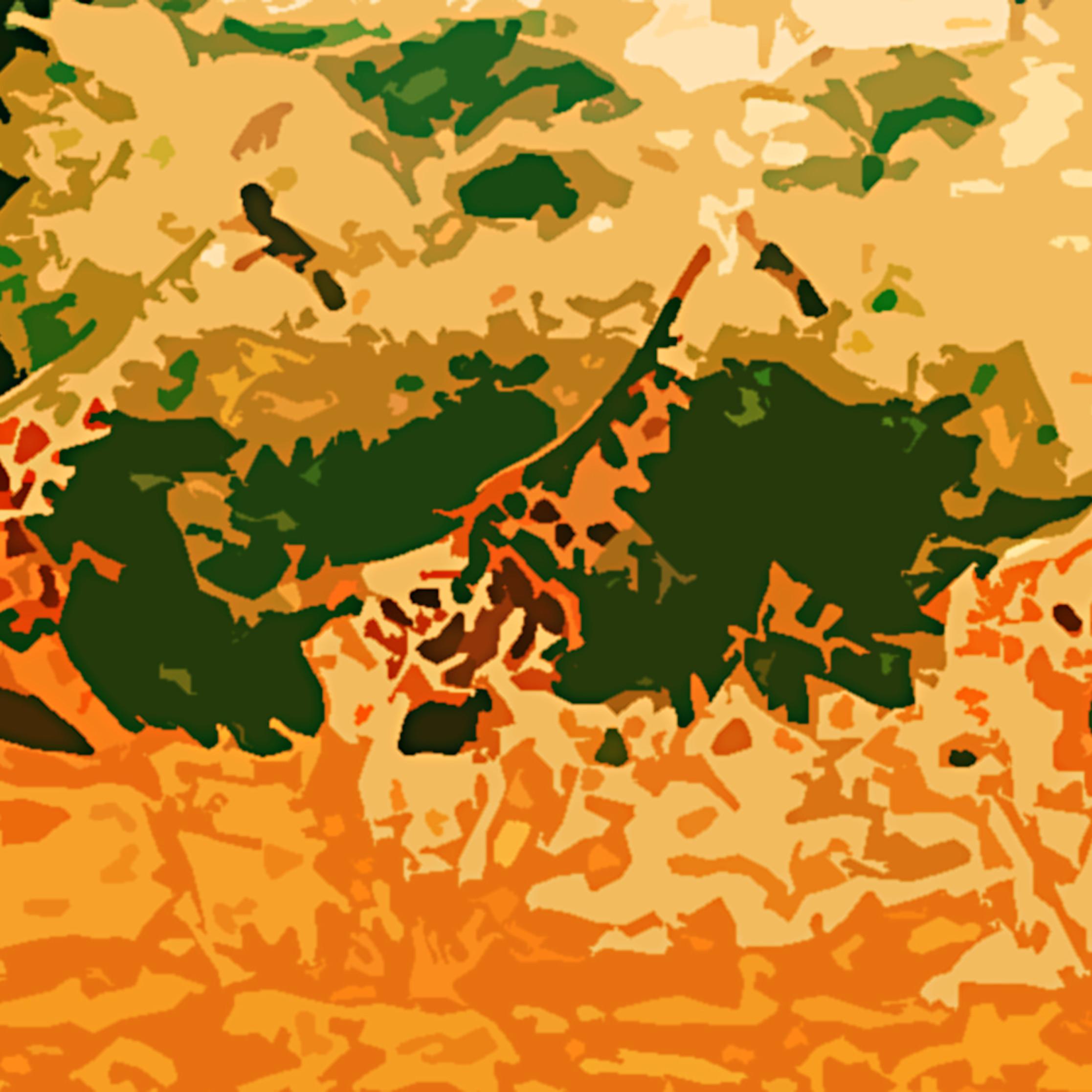 Camouflage b7zn5w