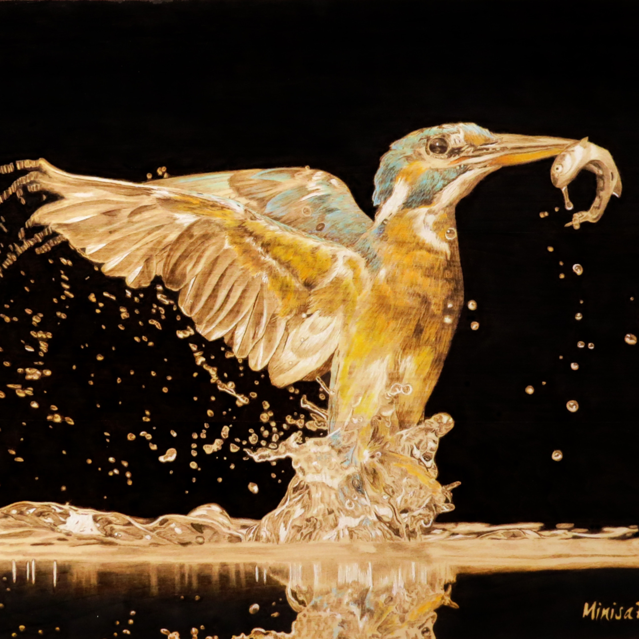 Kingfisher color ow3jhc