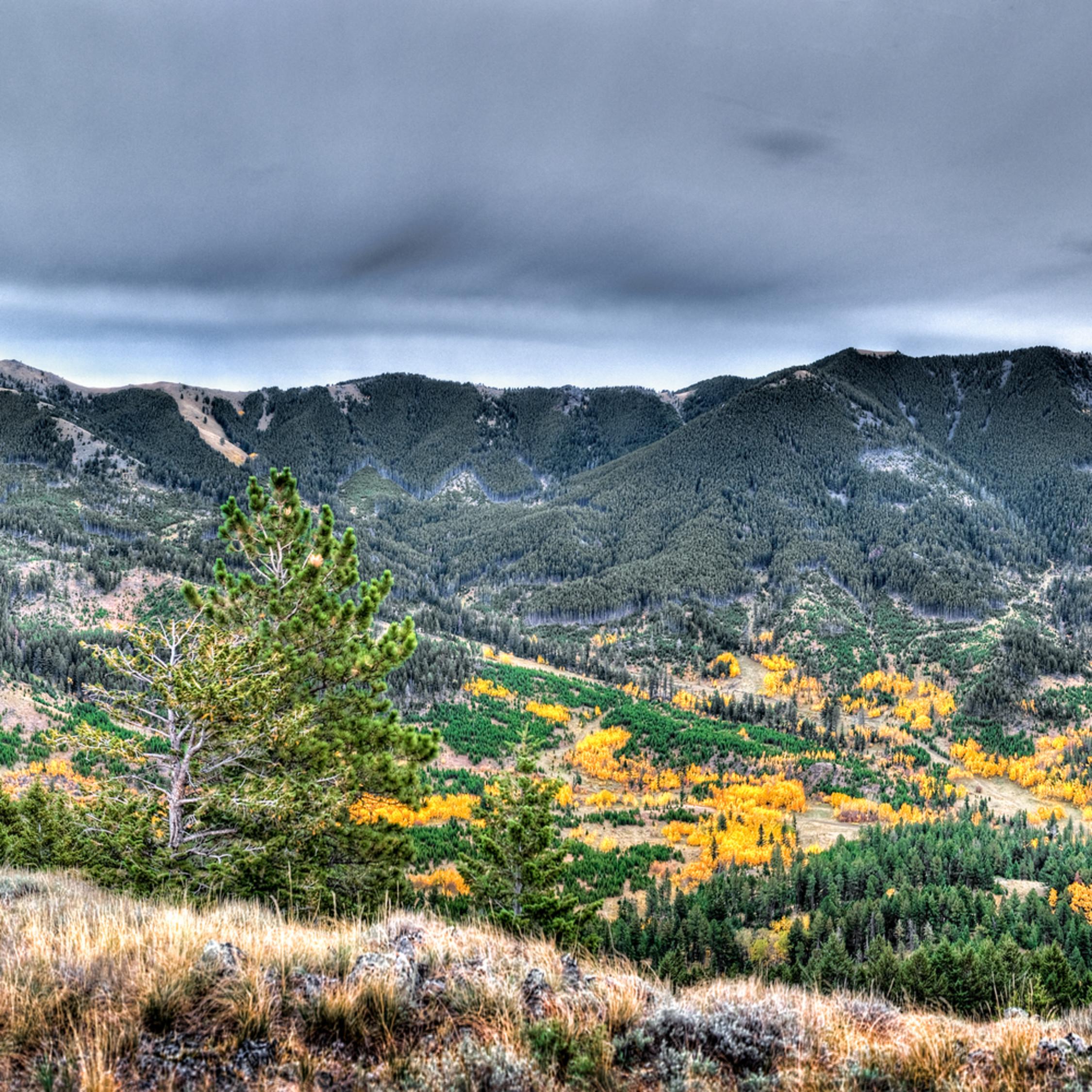 Pecora ridge ahyk1i