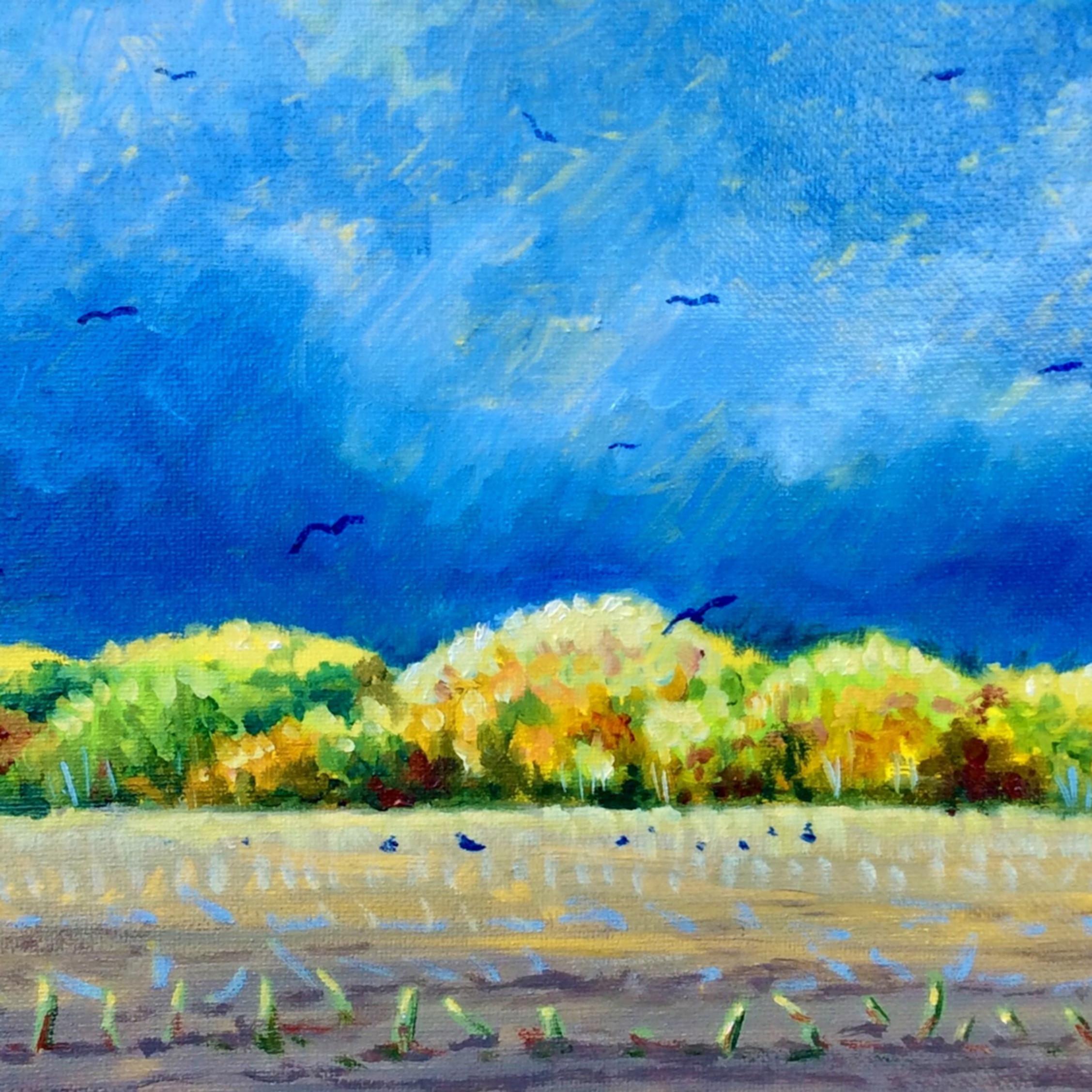 Asf 31 cornfieldbirds zqxkzc