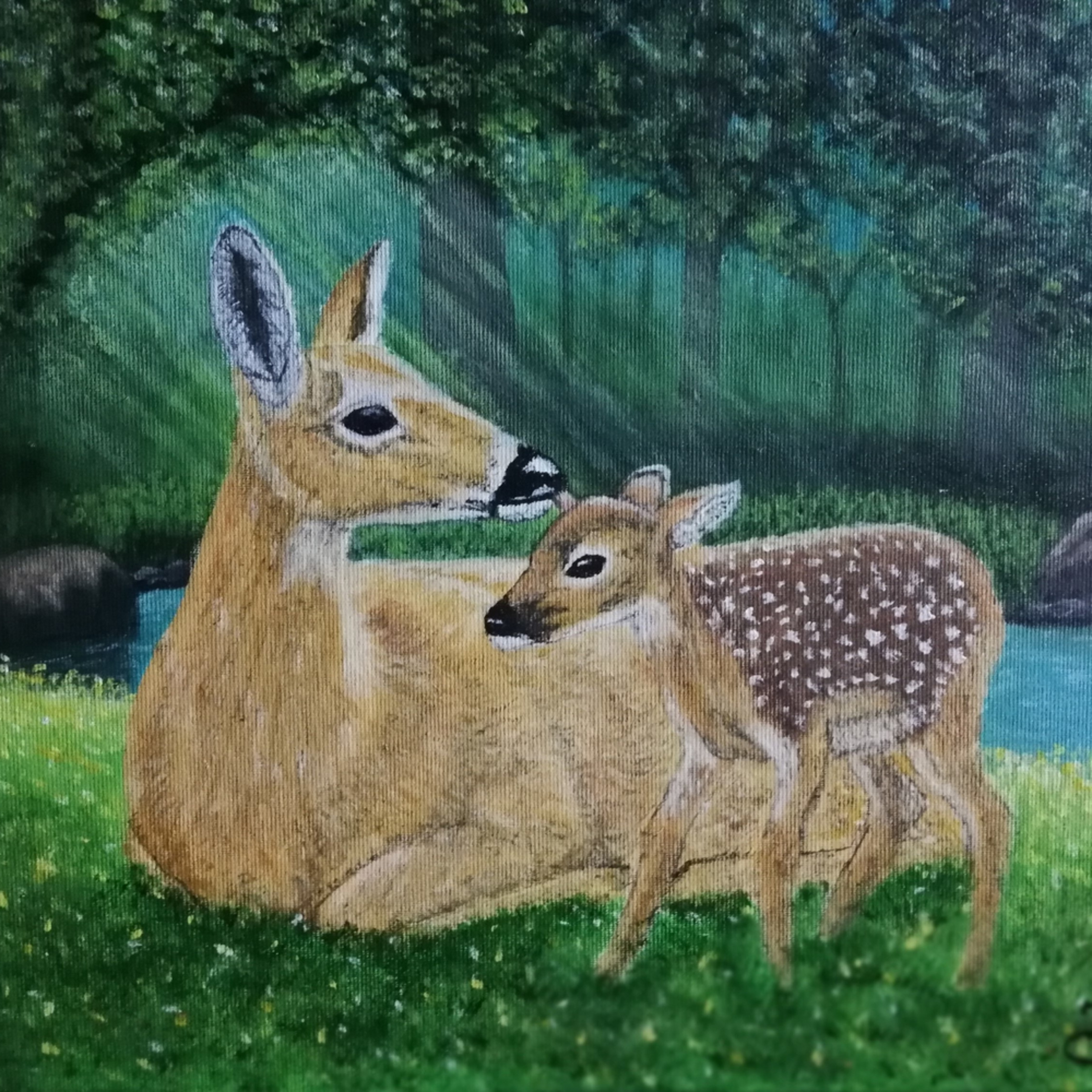 20652640 deer mother with her child i8iriw