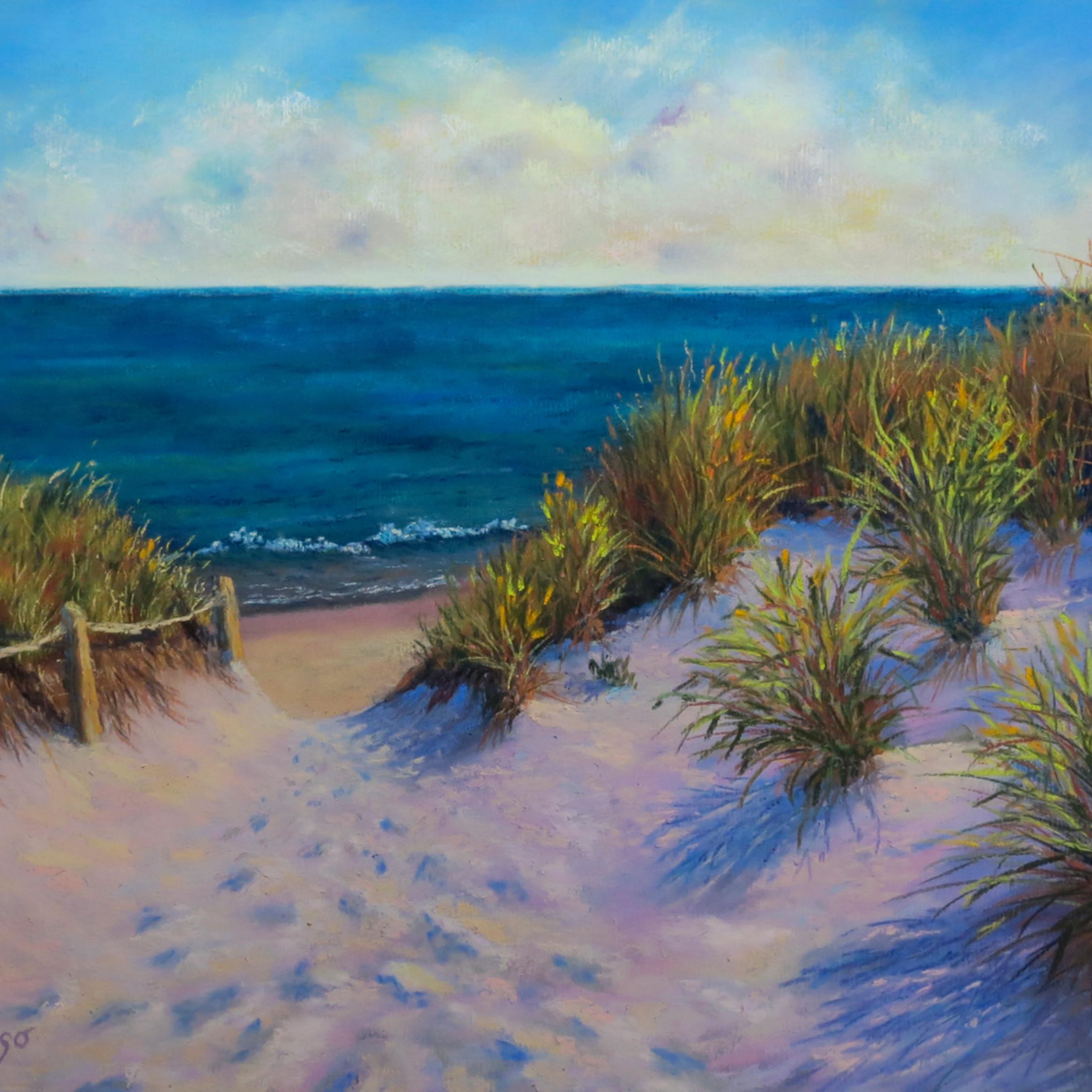 Cape cod dunes crrg0a