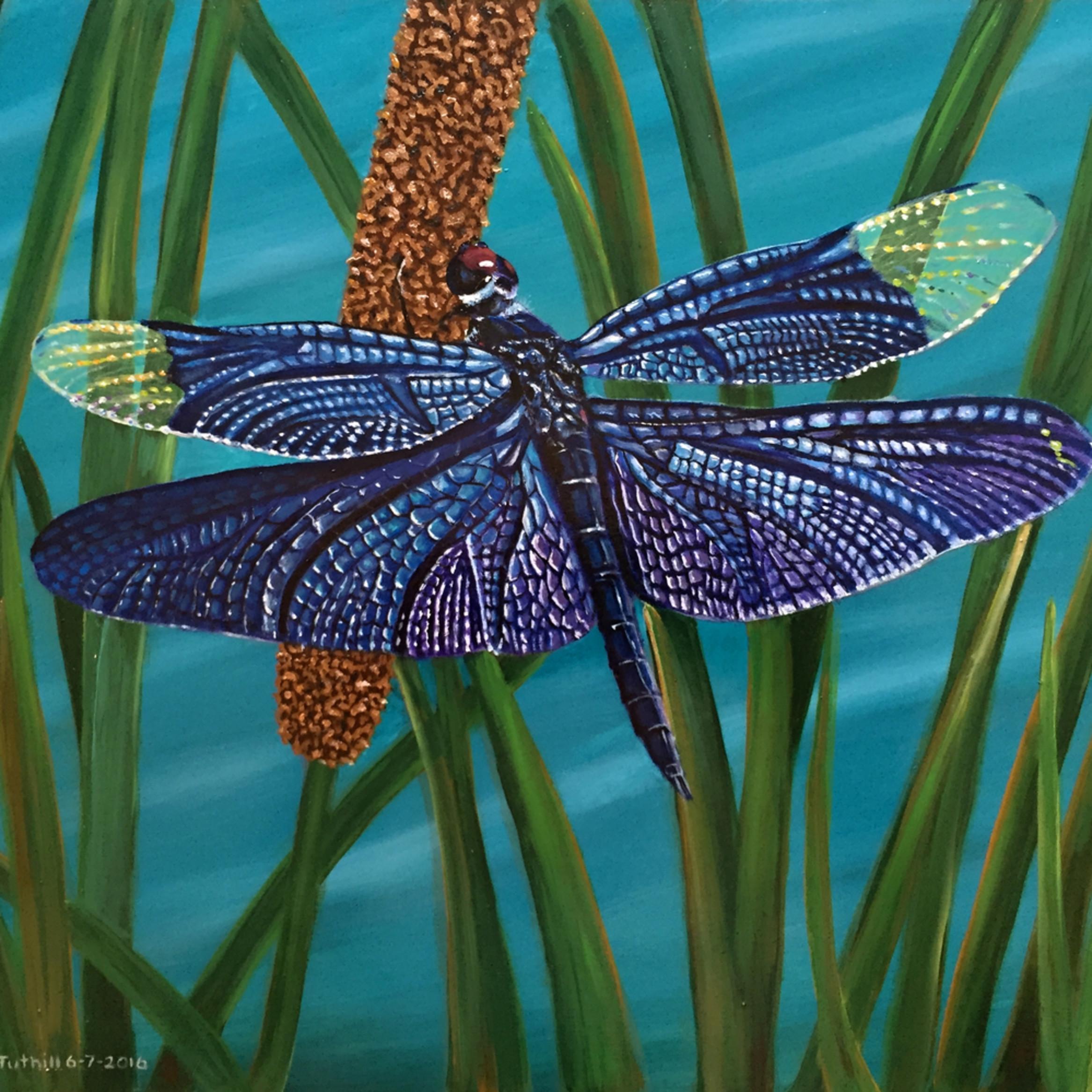 Dragonfly l0wdqm