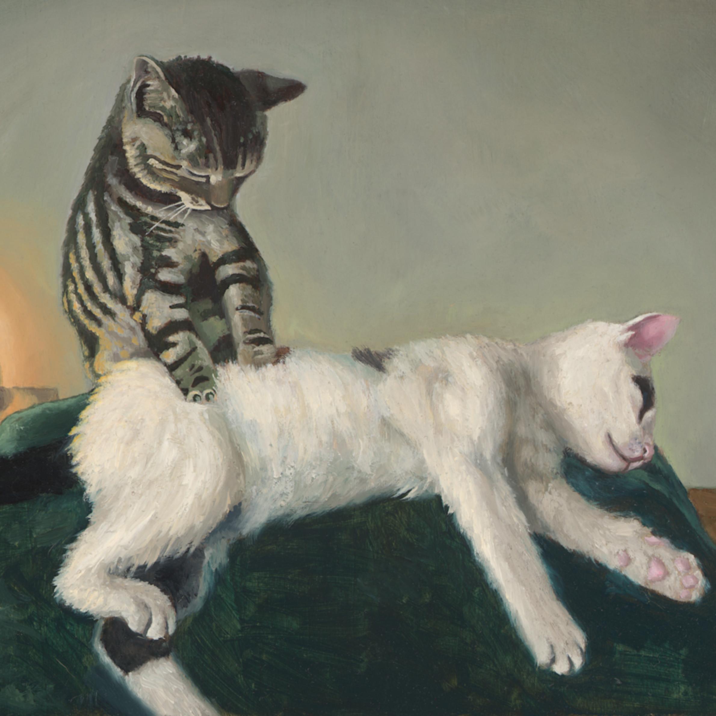 Massage kitty rgb hz4bz4