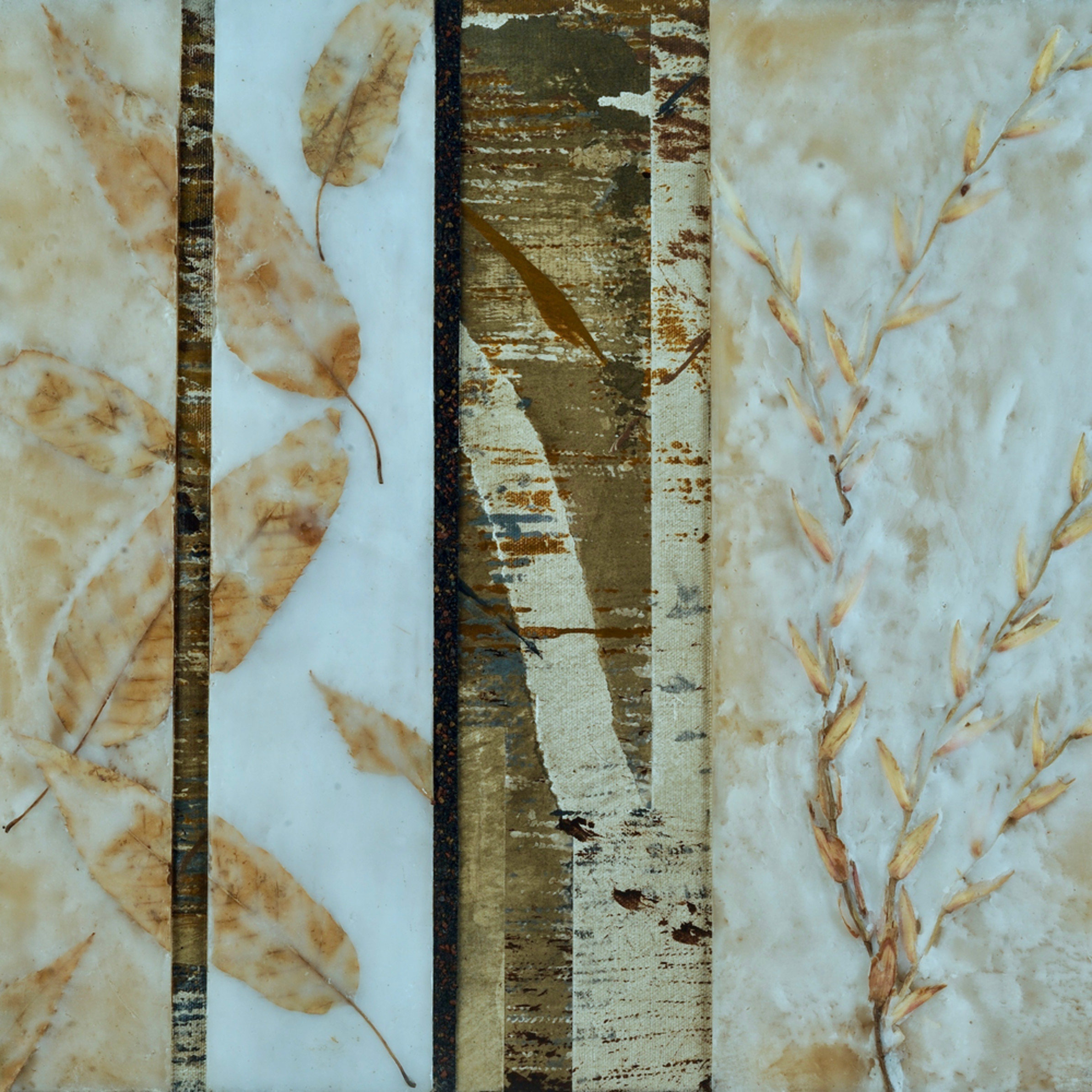 Linear leavestif e189xc