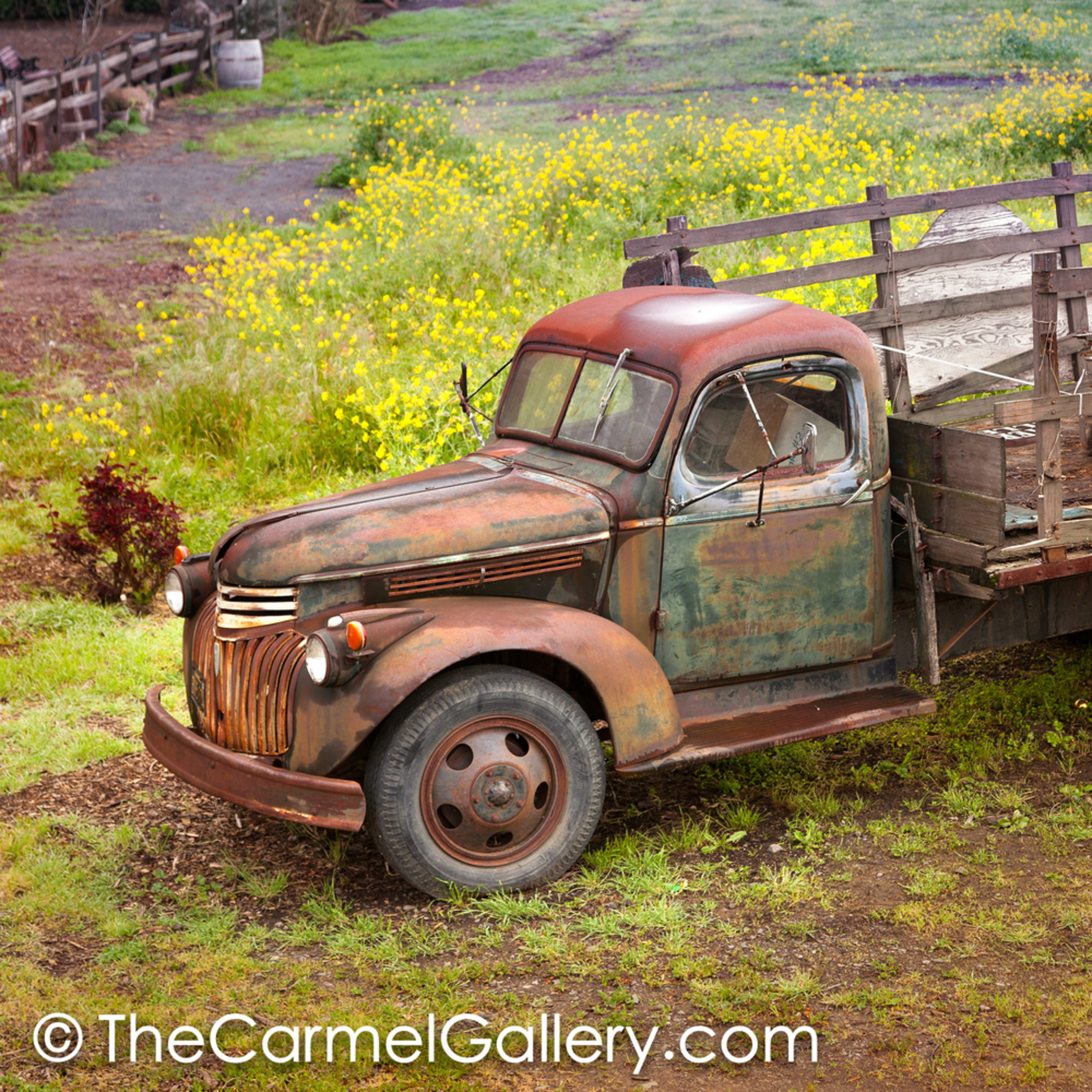 Rusted truck and mustard asqmws