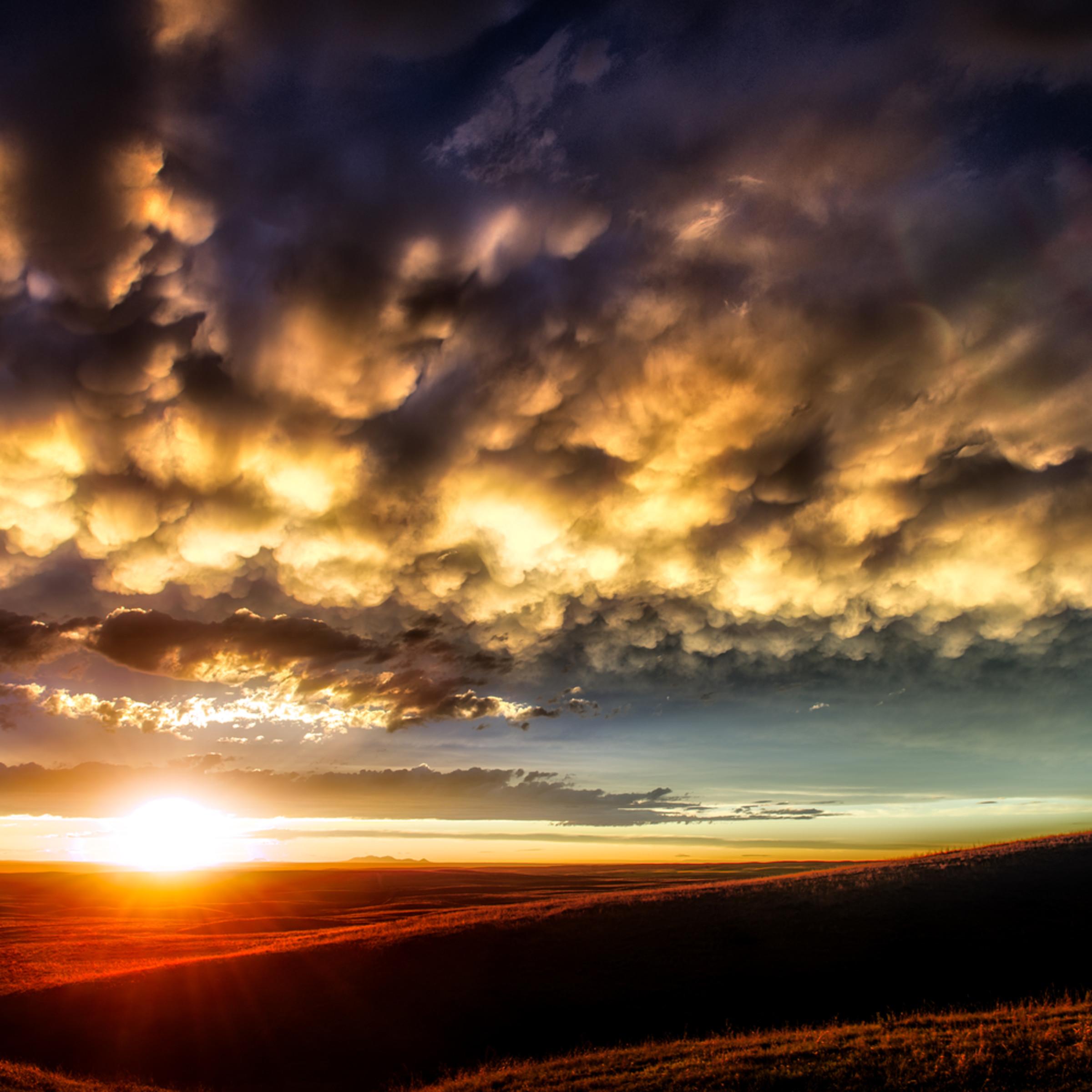 Sweetgrass sunset sh7n4o