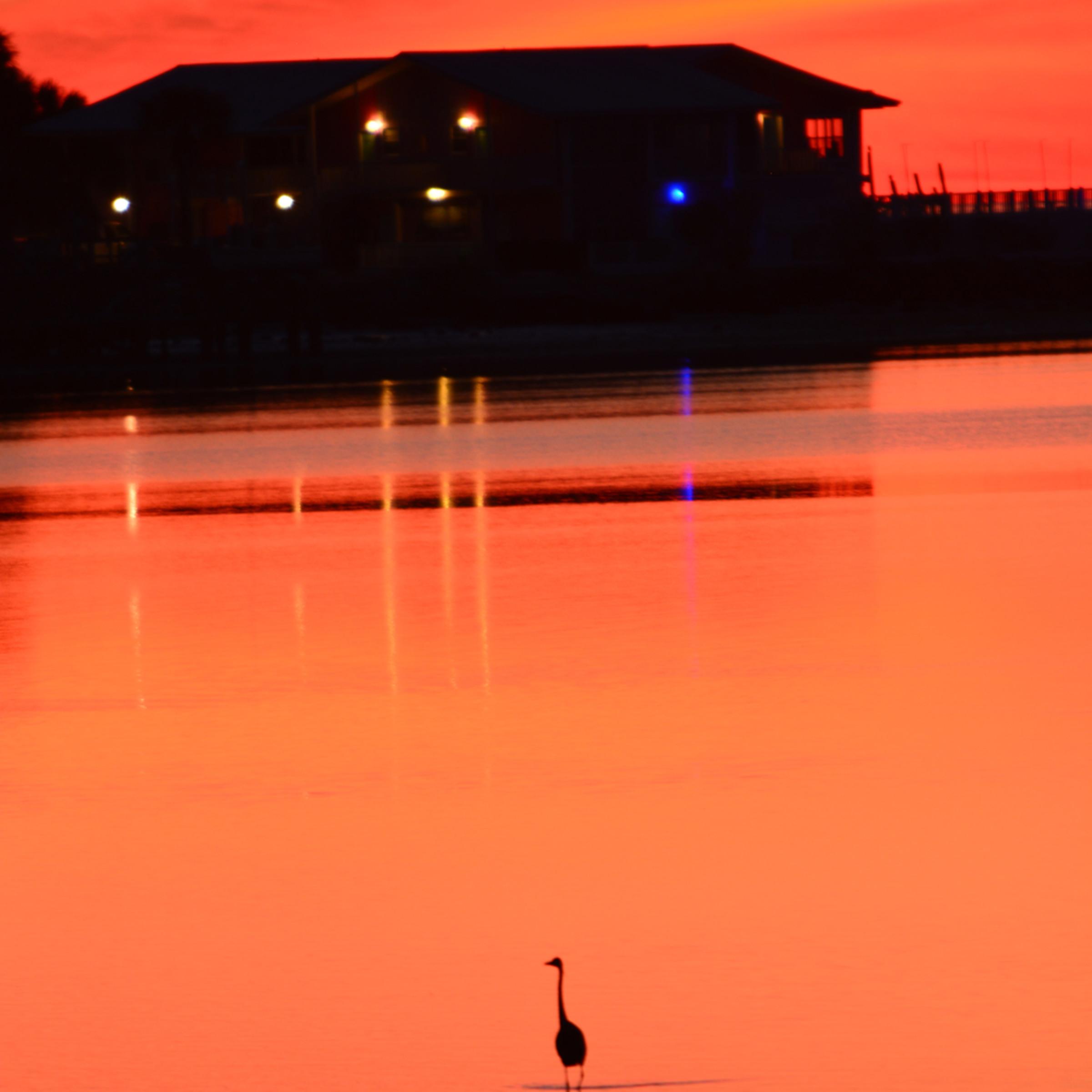 Nolan cedar key sunset ckipph