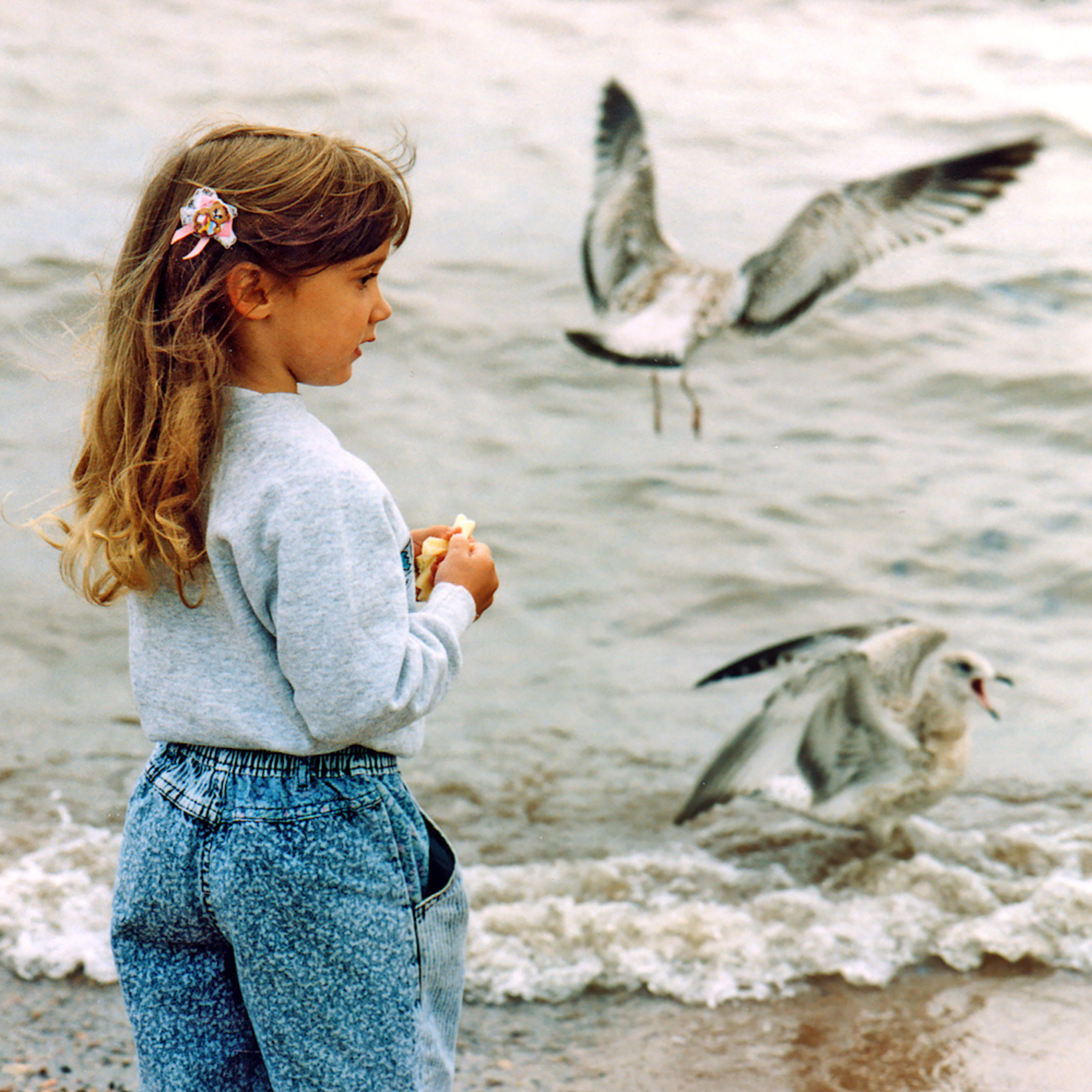 Girl gulls vvjwma
