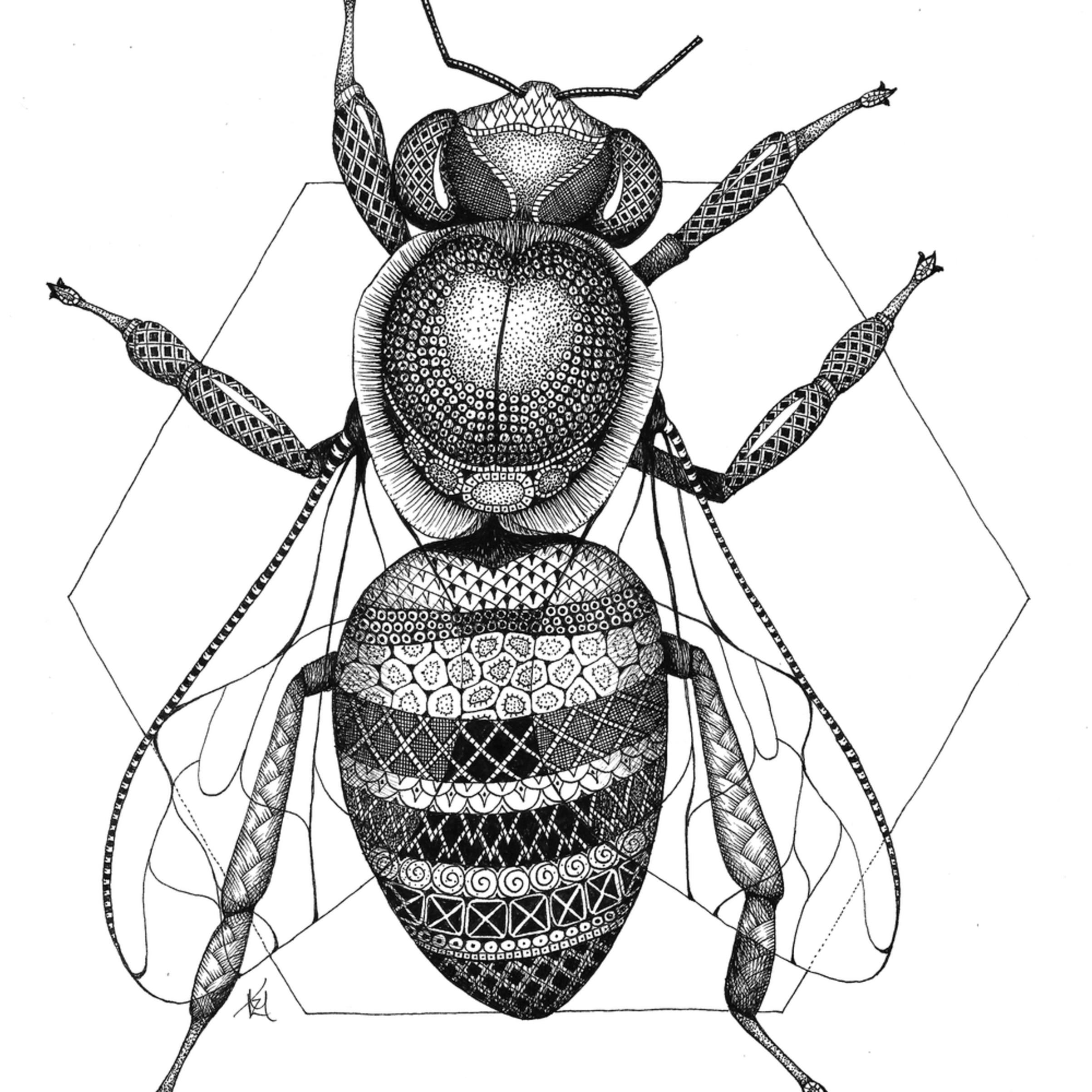 Honeybee yks0o6