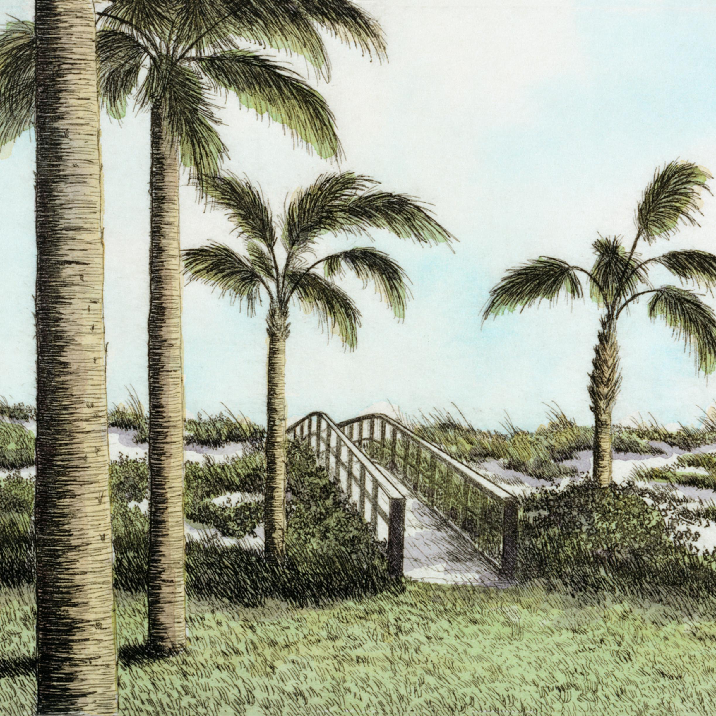 Isle of palms 9x7 pf5plj