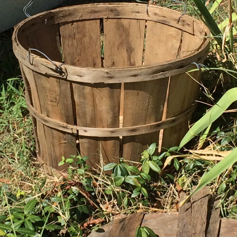 Bucket1 qdolsa