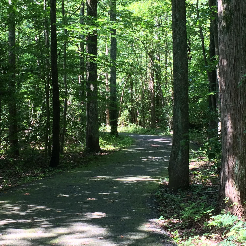 Path2 l3rtgf