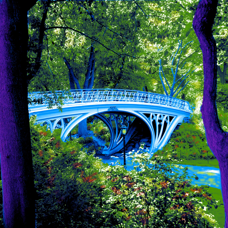 Bridge central park bwma5g