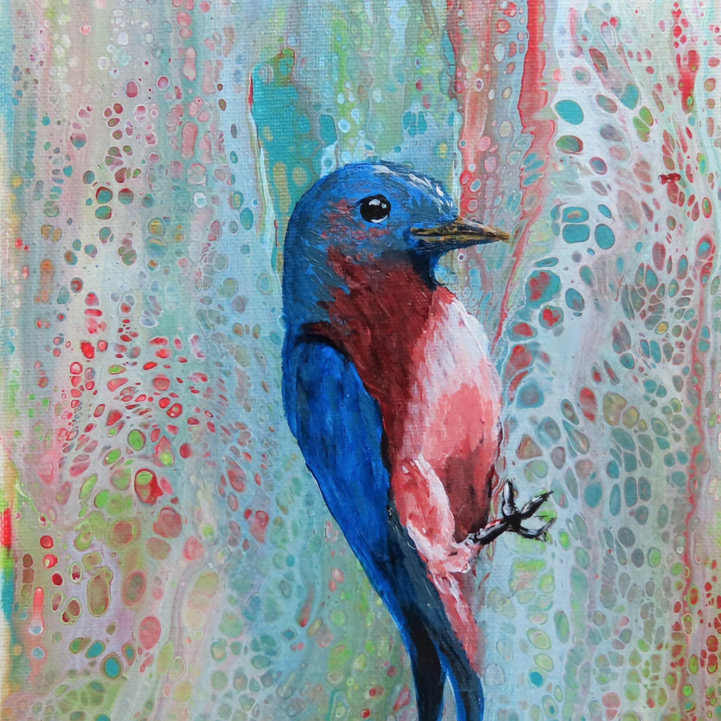 Bluebird viyvjr