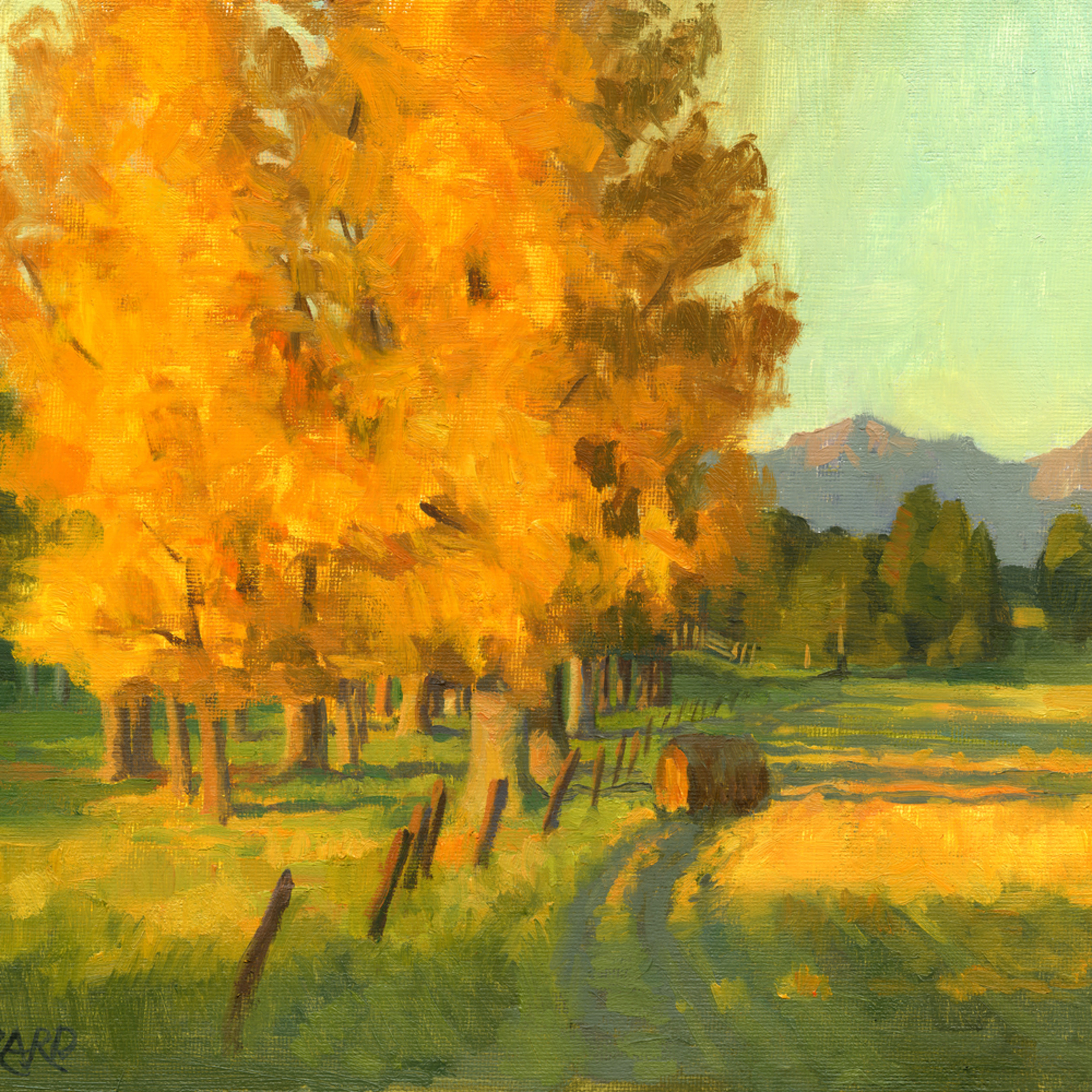 First yellow trees final vryine